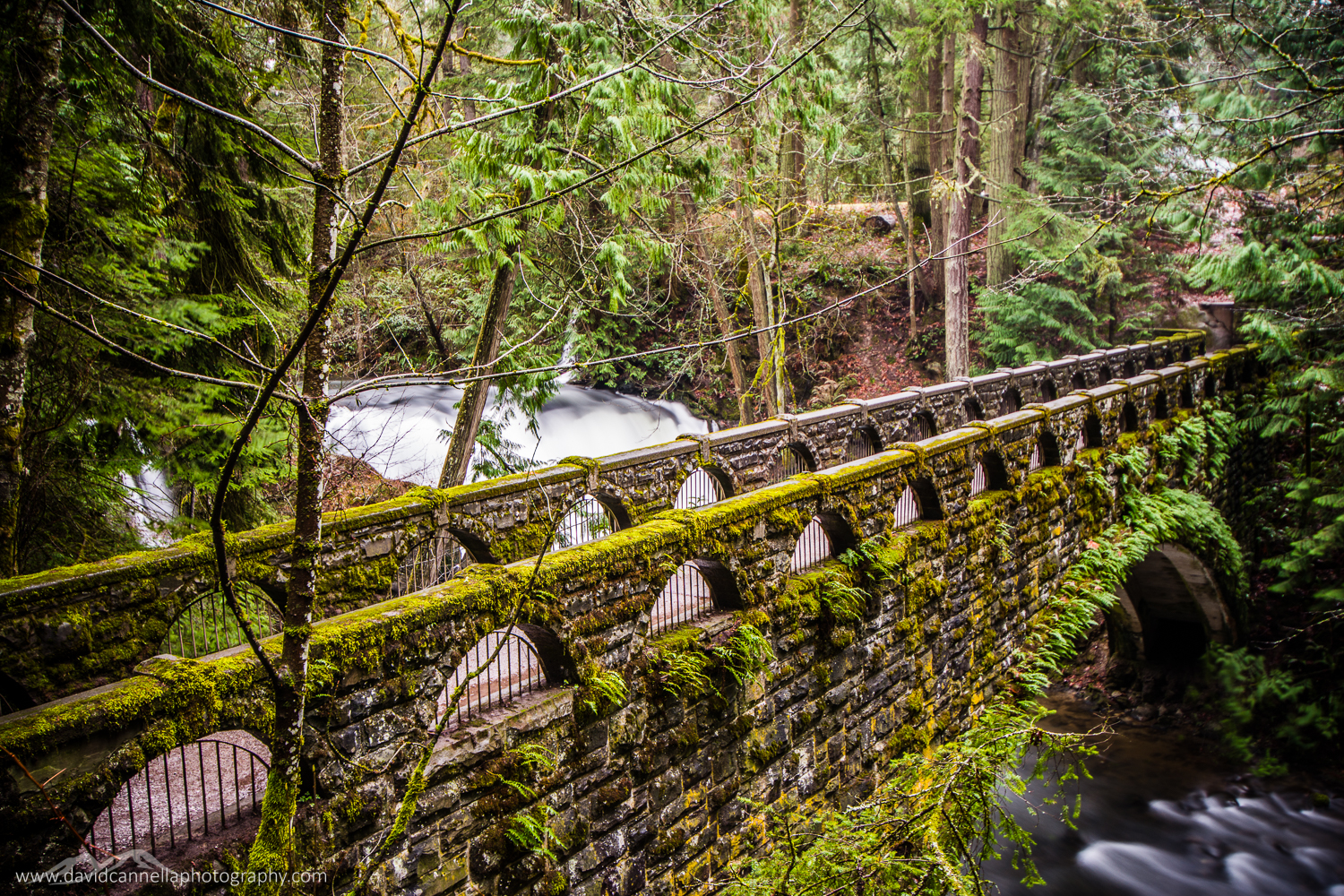 Whatcom Falls Bridge, USA