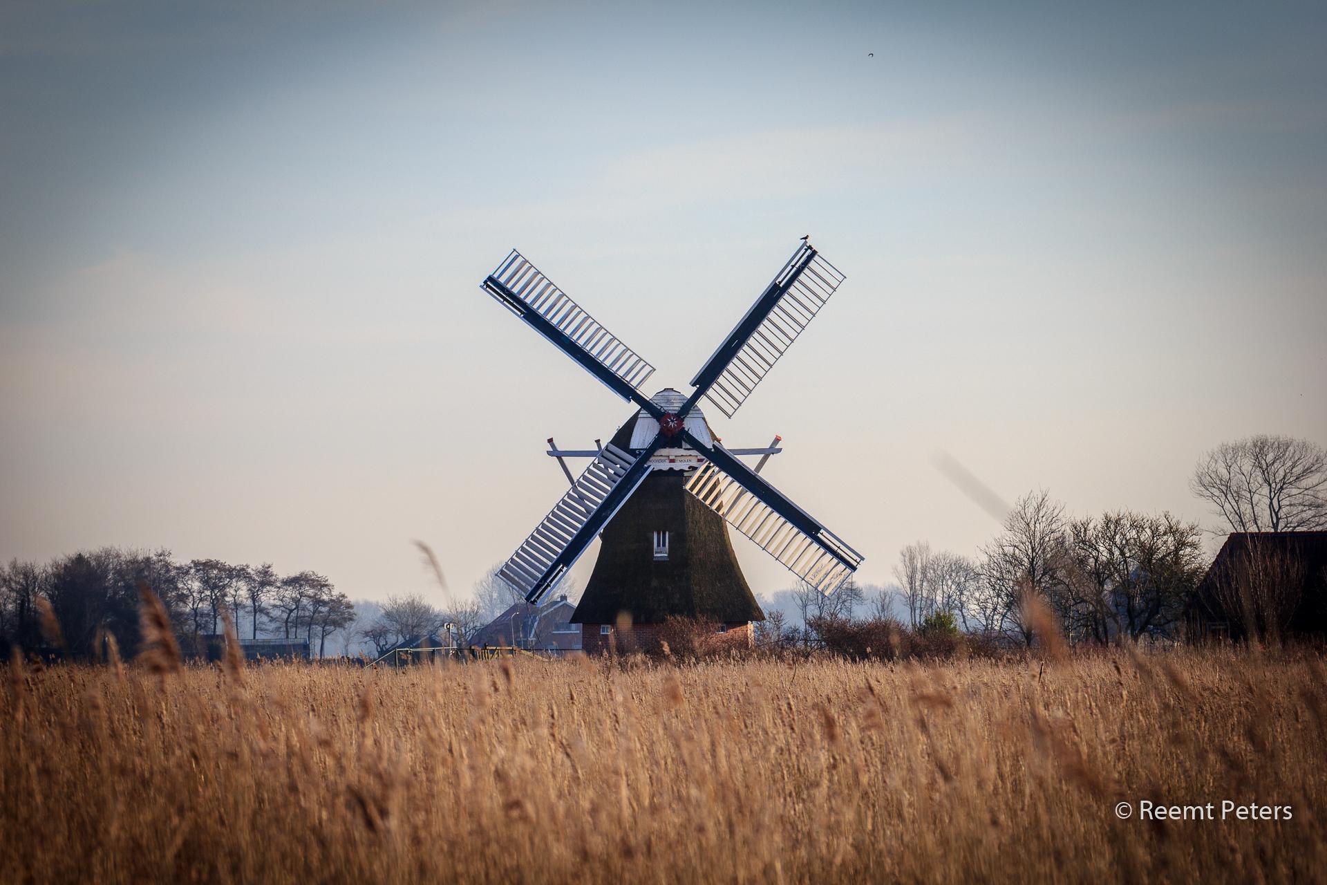 Noorder Molen, Netherlands