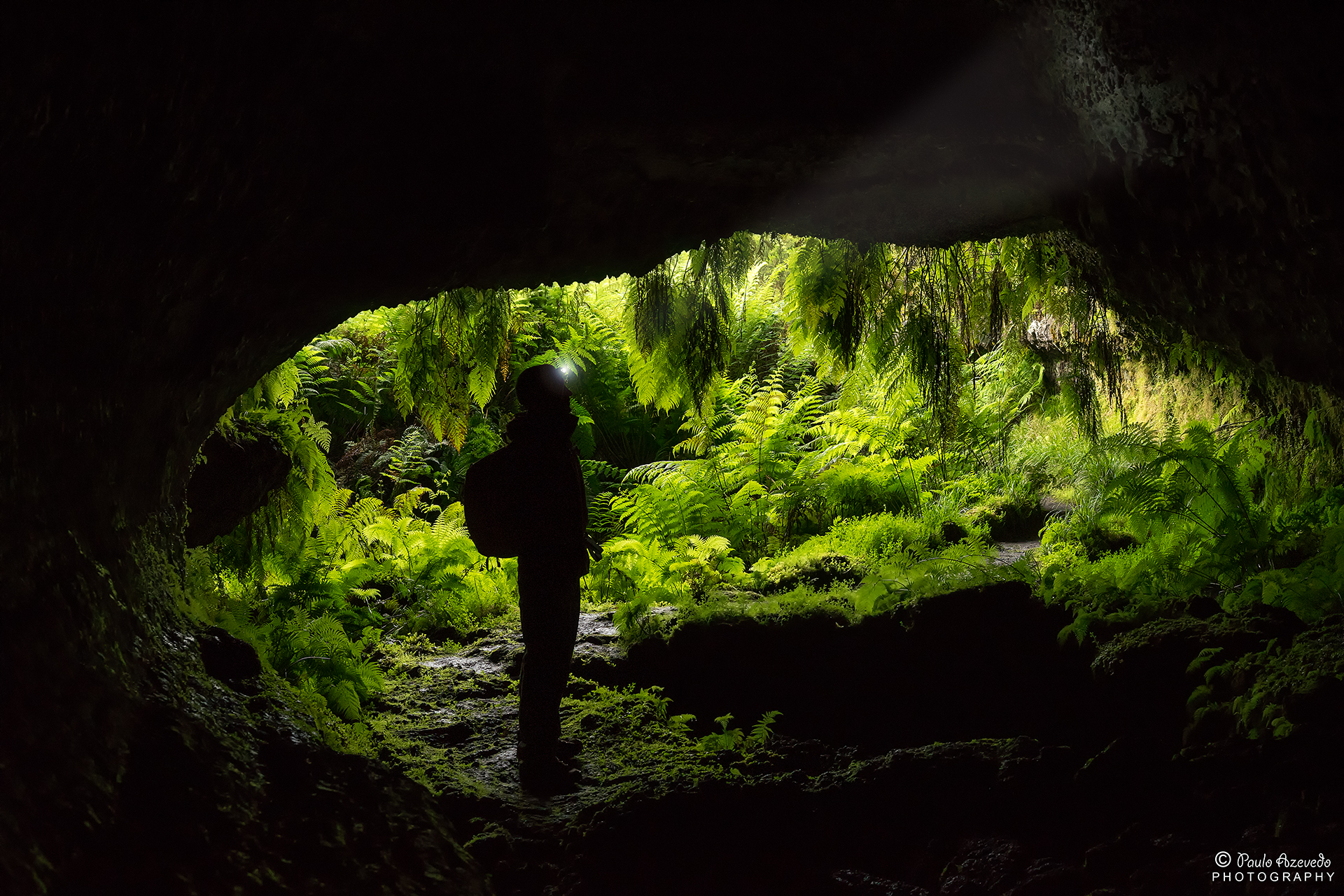 The entrance to the gnome world, Portugal