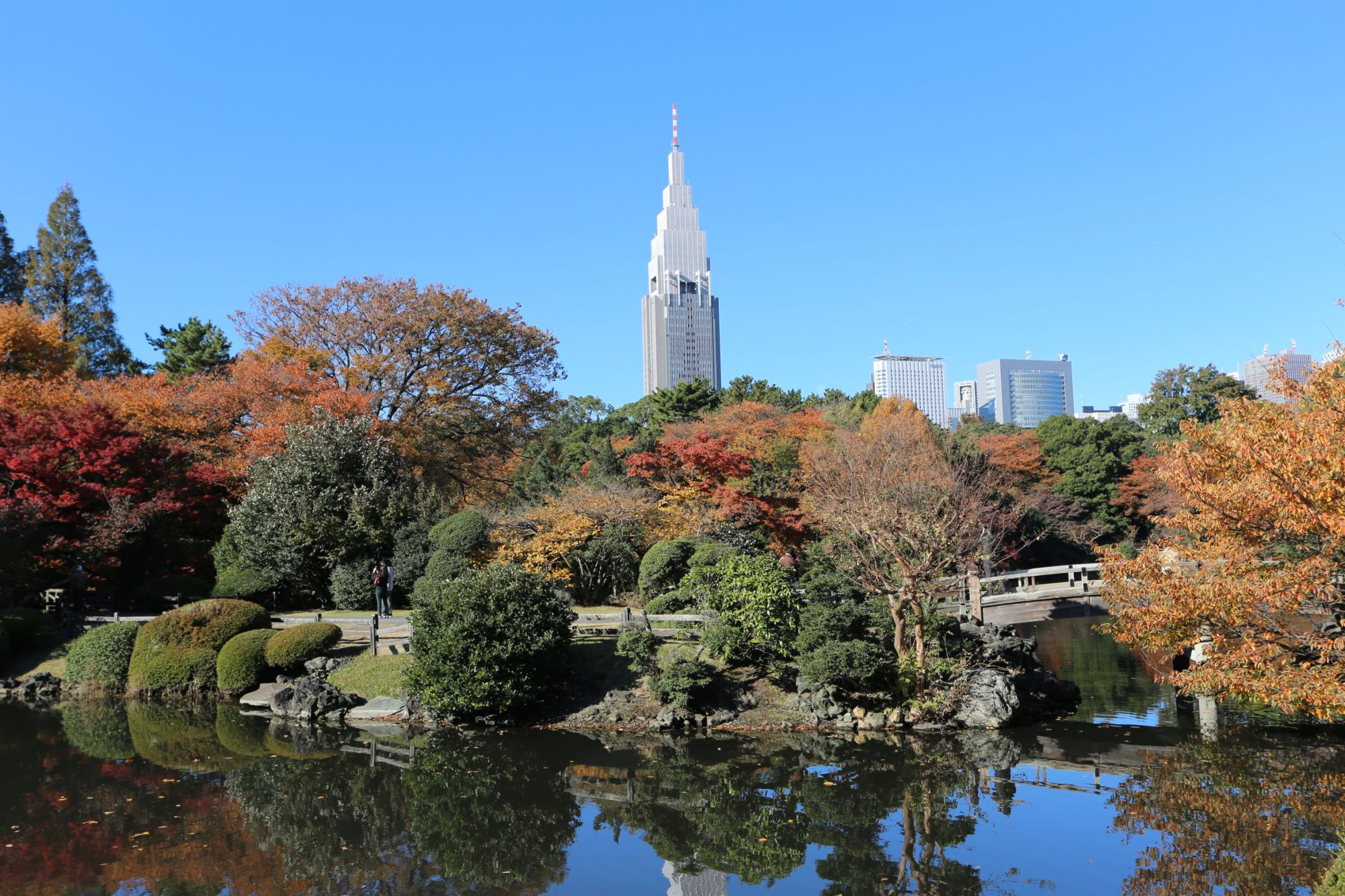 Shinjuku Gyoen Garden, Japan