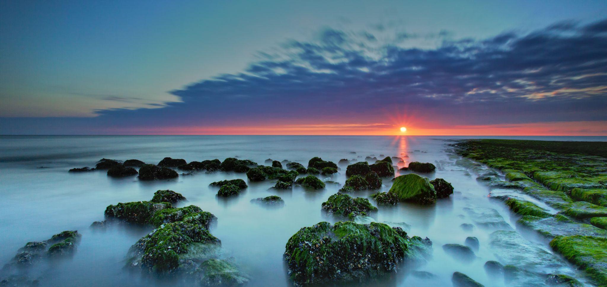 crab sunset, Netherlands