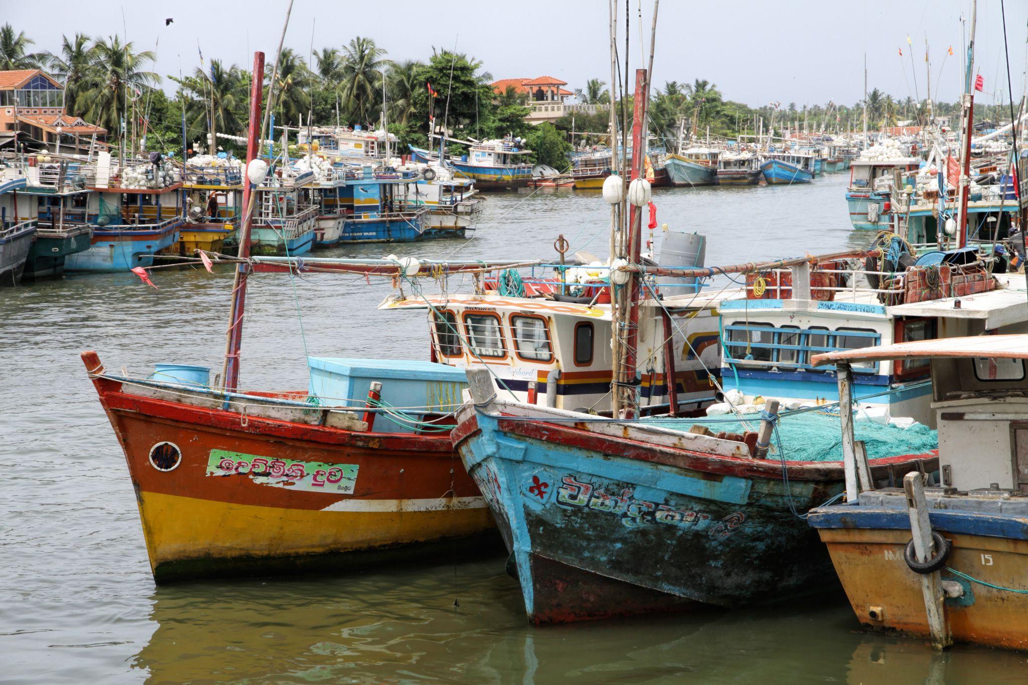 Negombo harbour, Sri Lanka