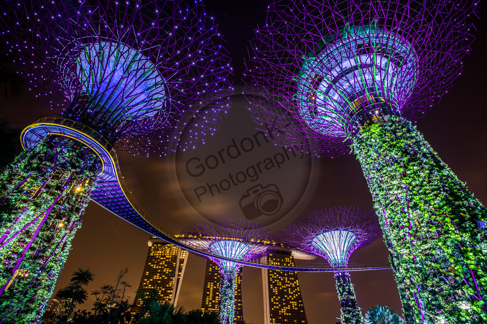 Singapore Supertree Grove - Gardens by the bay, Singapore