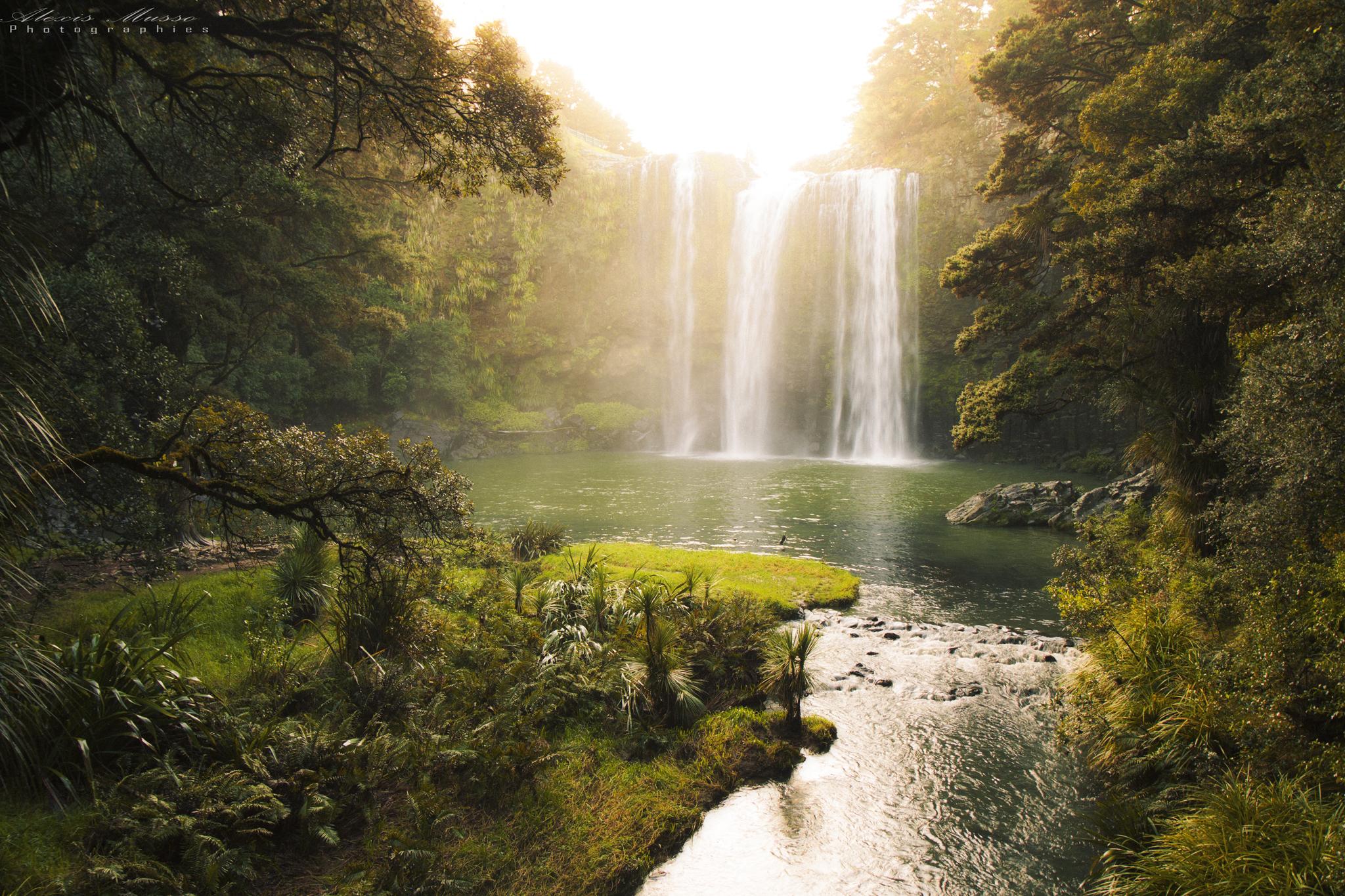 Whangarei Fall, New Zealand