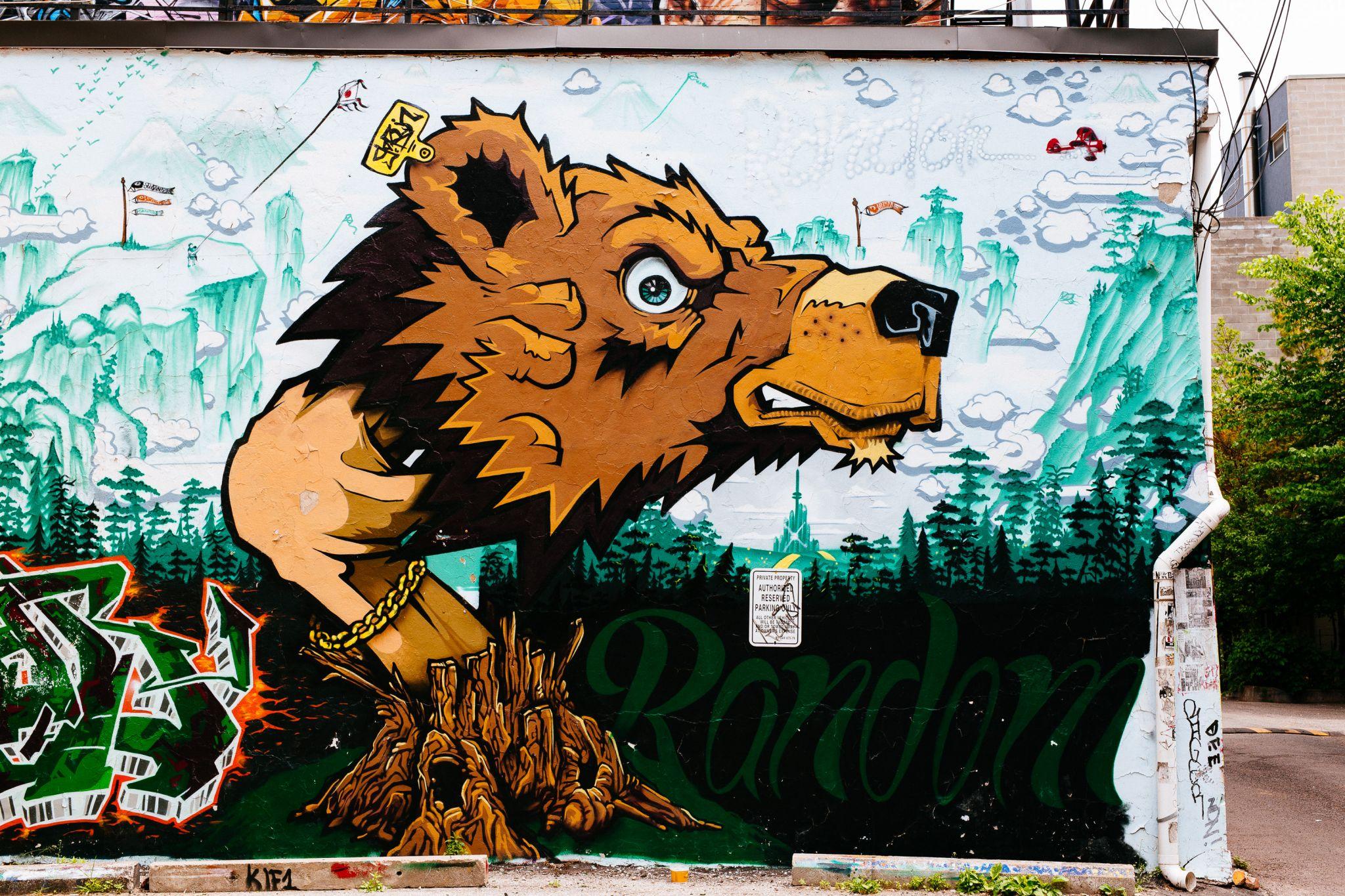 Graffiti Alley, Toronto, Canada, Canada