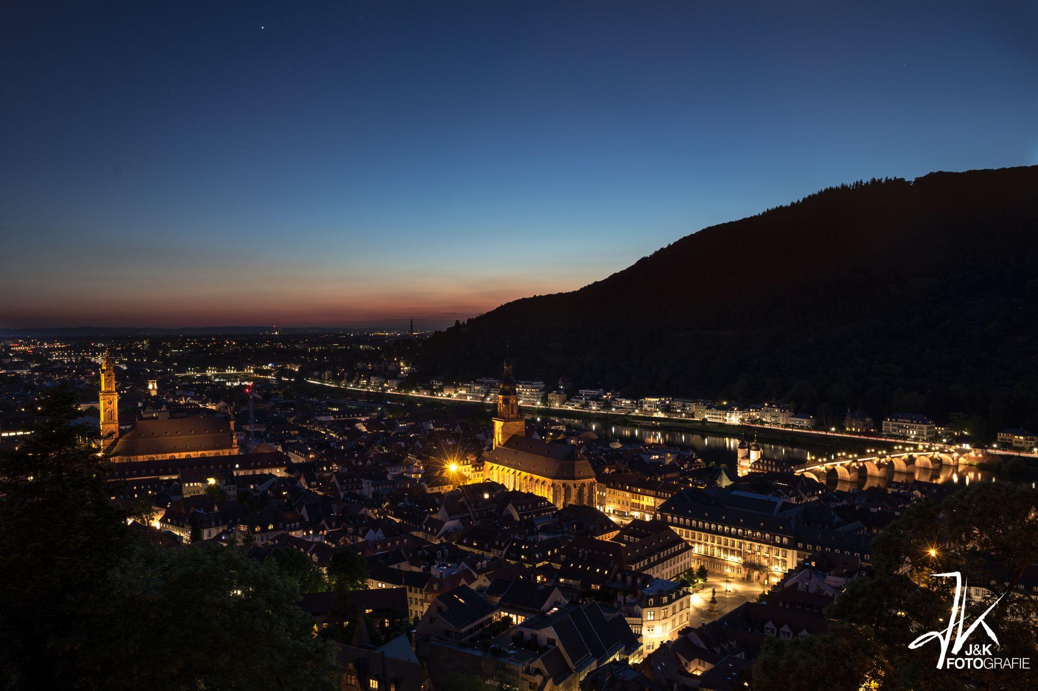 Heidelberg vom Schloss aus, Germany