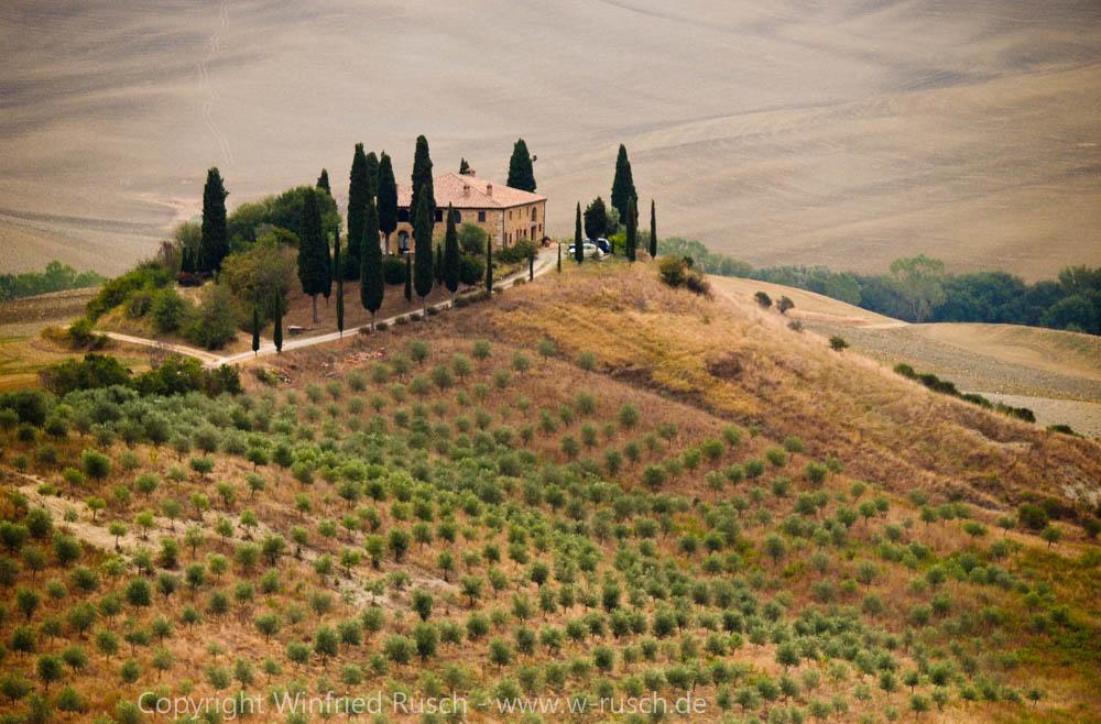 I Cipressini bei Pienza, Italy