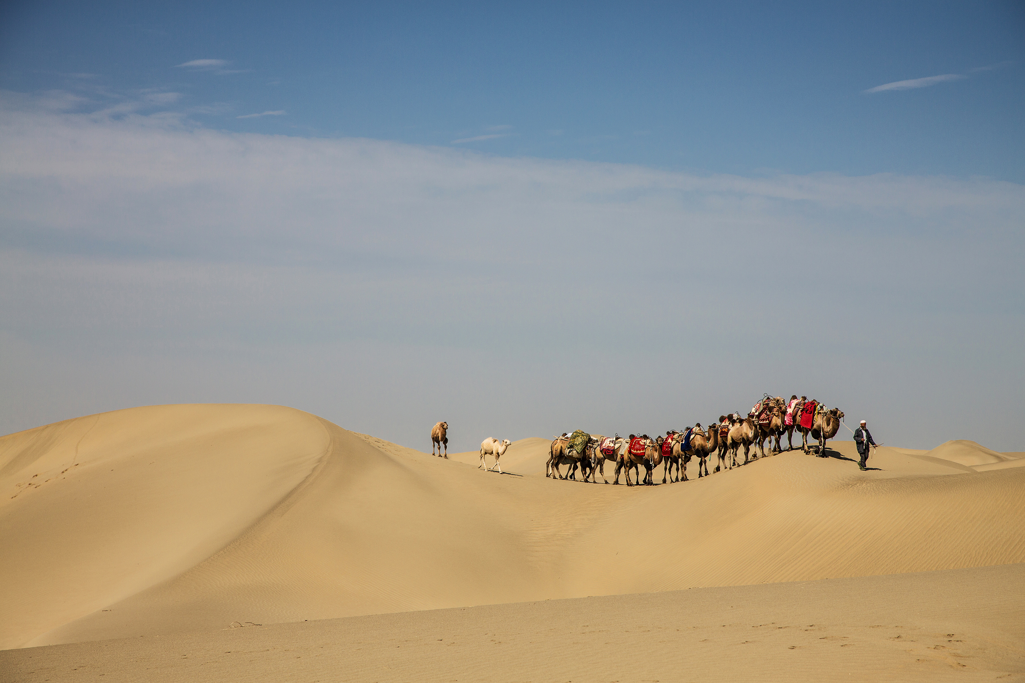 On the way in the Taklamakan Desert, China