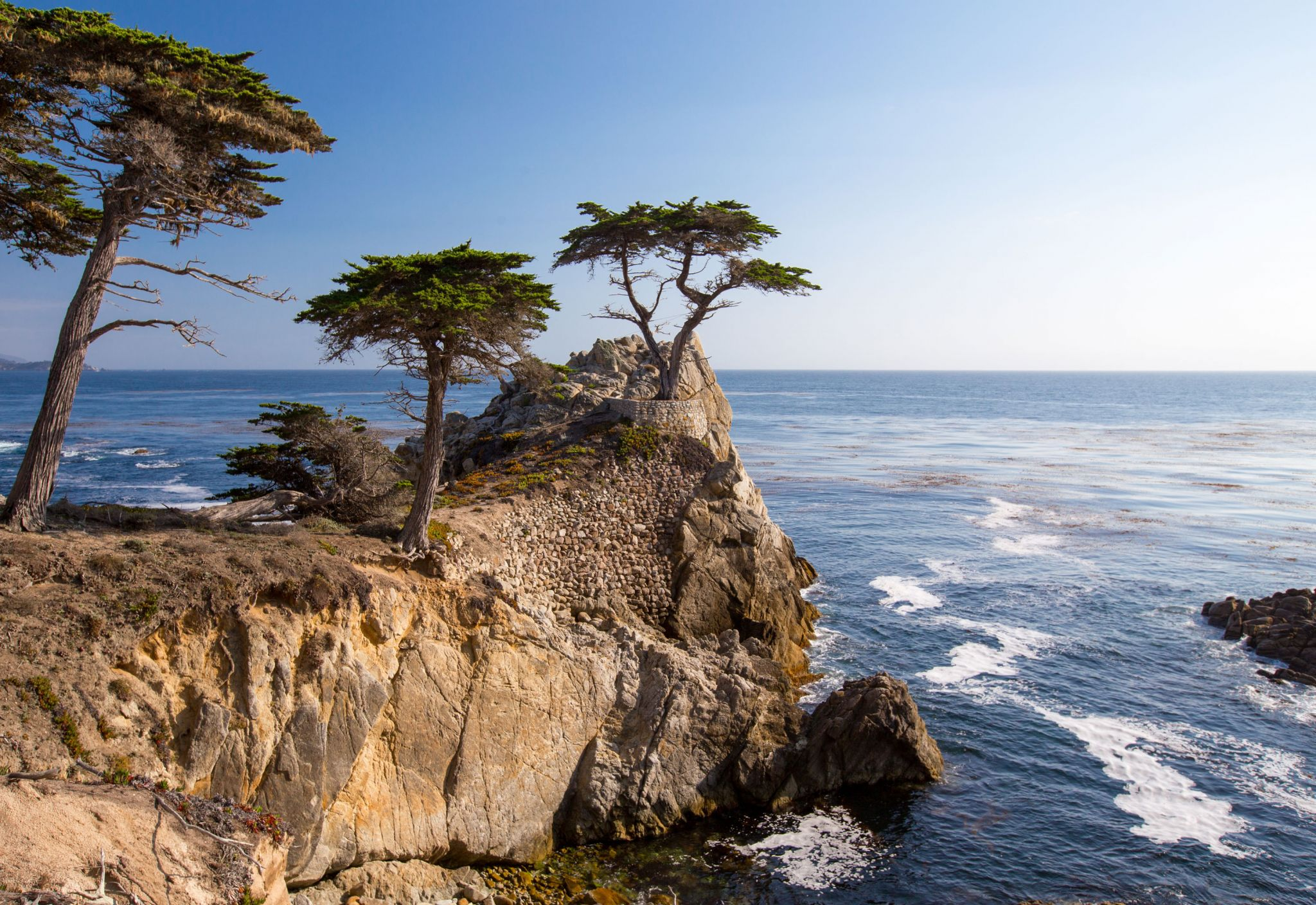 The Lone Cypress, Pebble Beach, USA