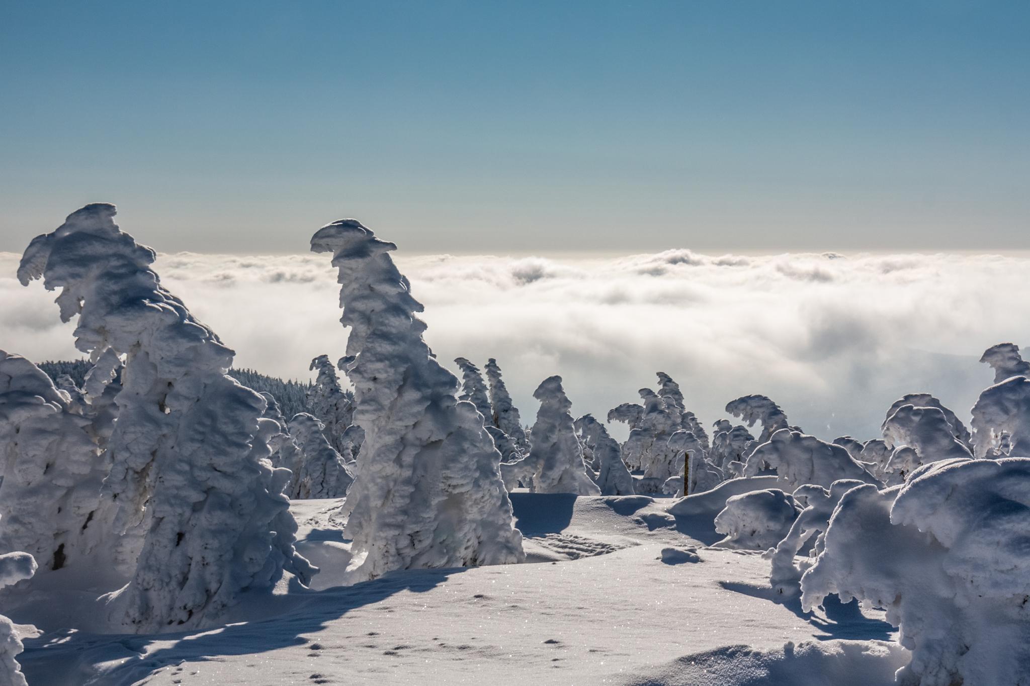 Frozen Troll Army on the Brocken summit, Germany