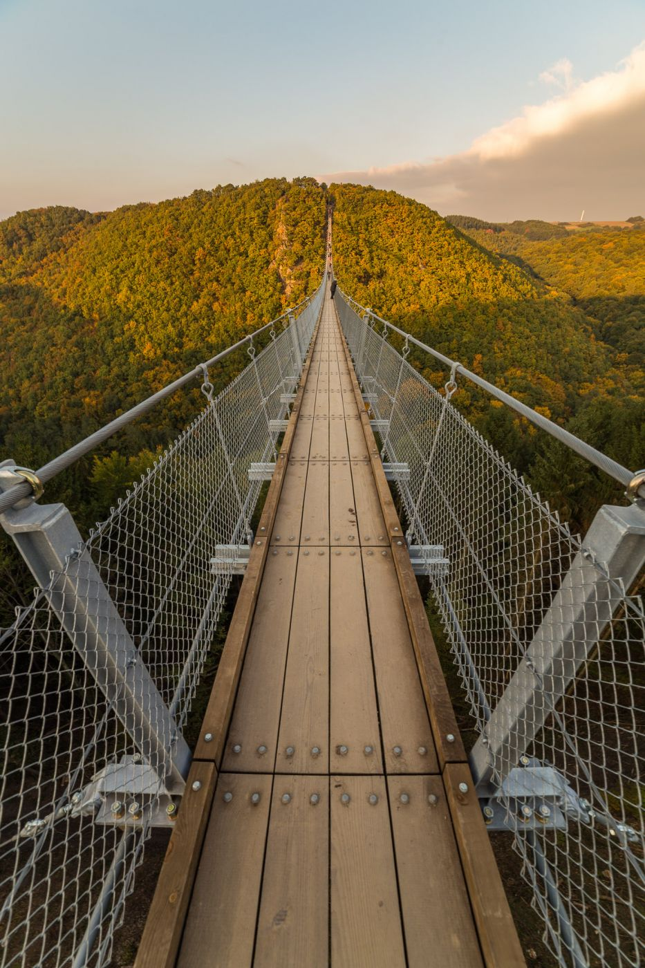 On the rope bridge, Germany