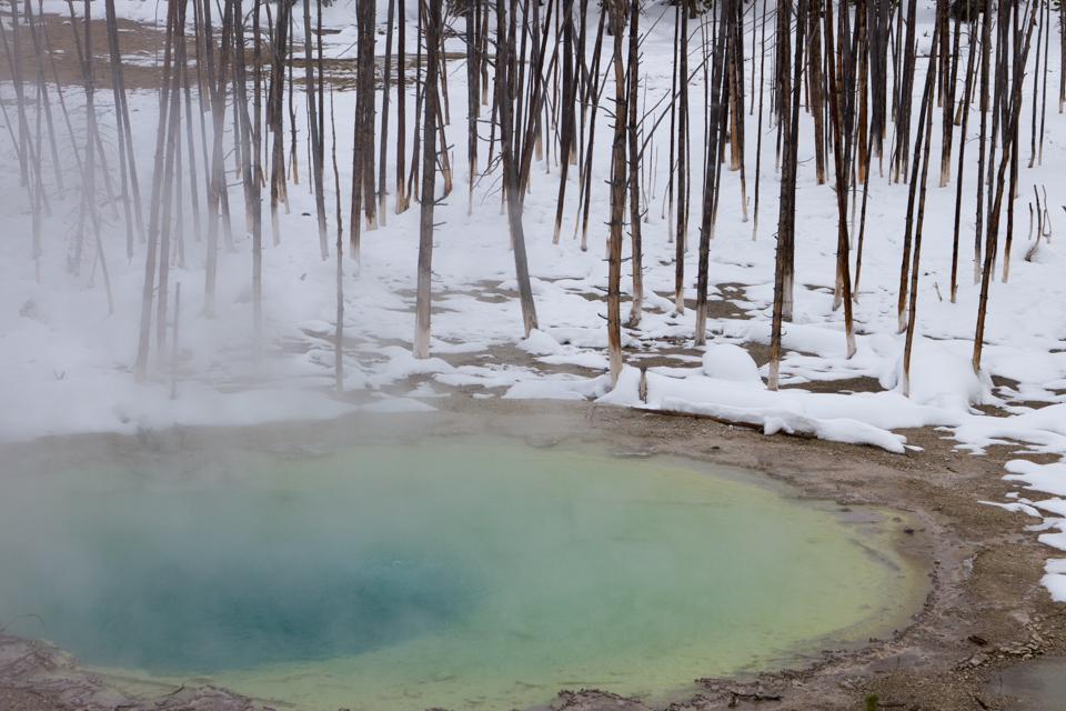Yellowstone Park - Winter, USA