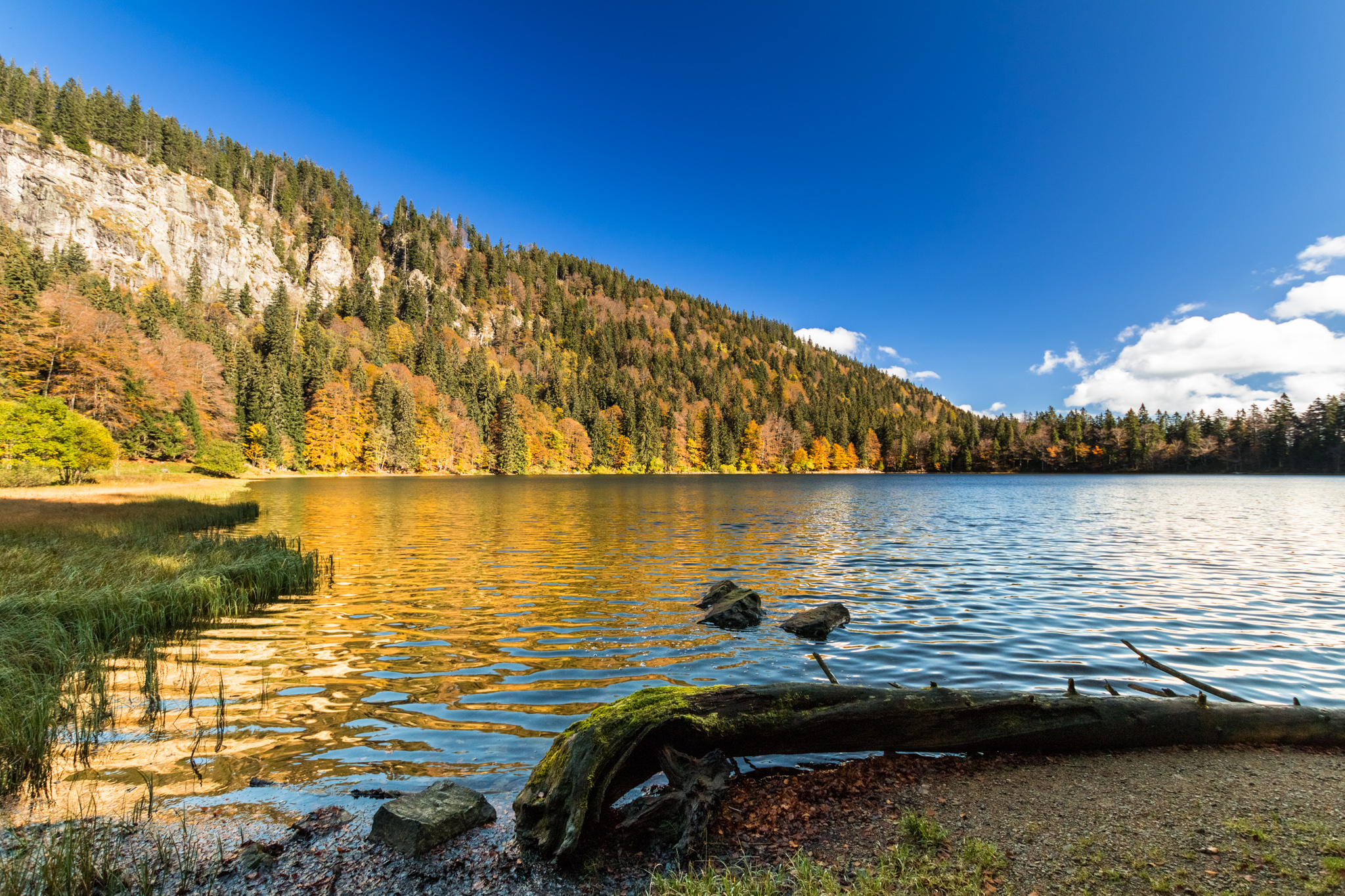 Feldsee, Black Forest, Germany