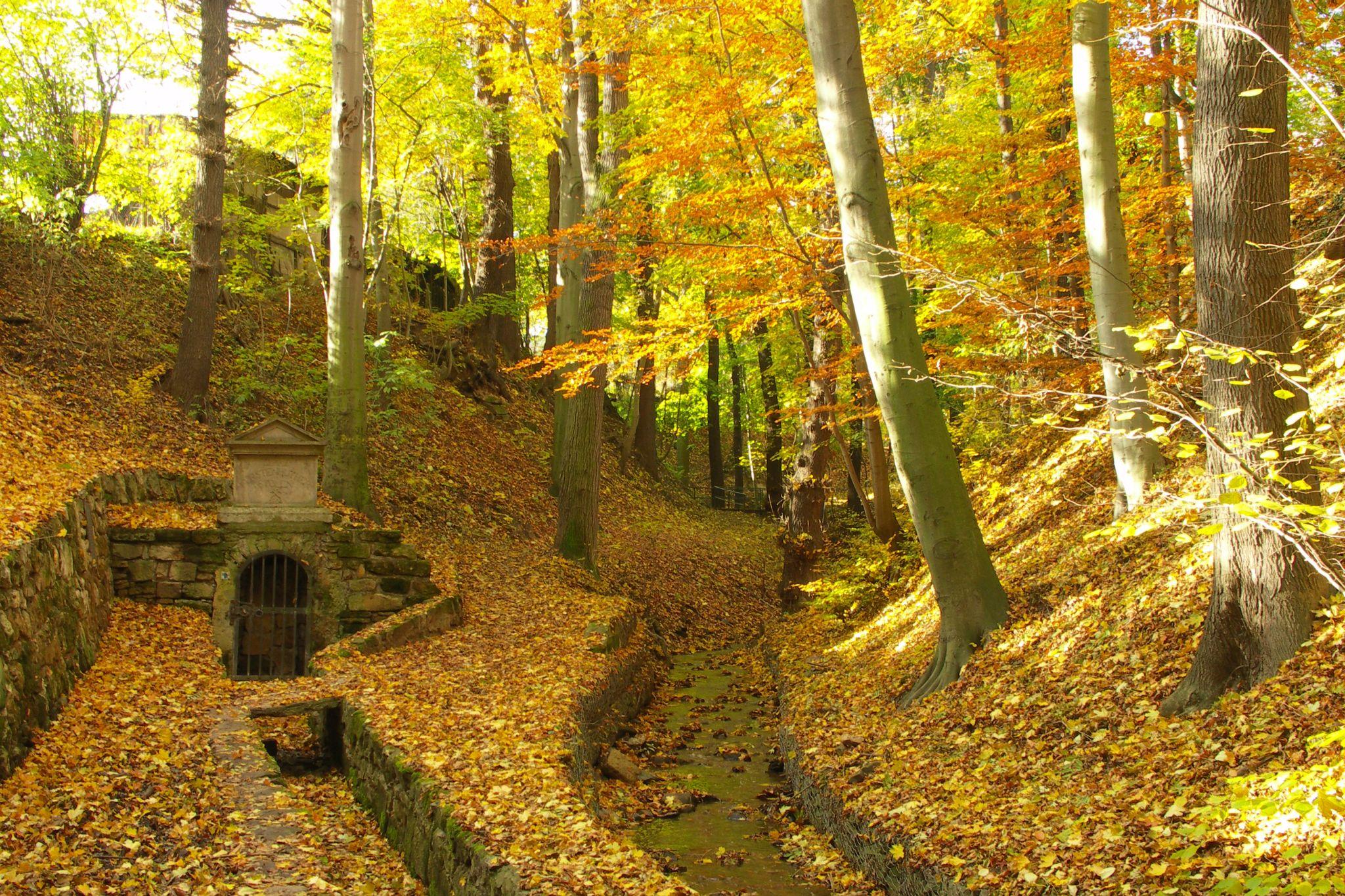 Siechenbach Tal, Germany