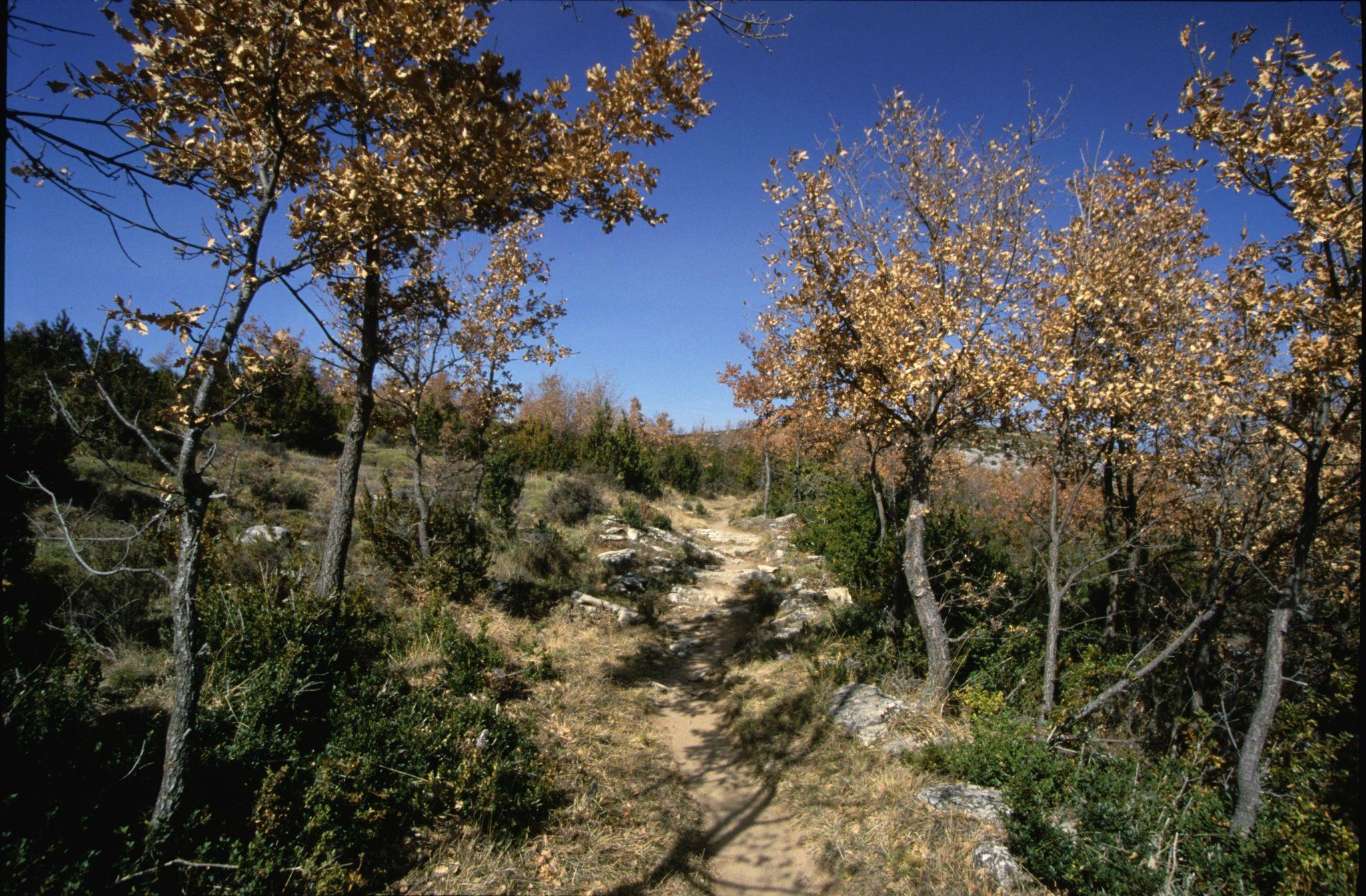Otin, Spain