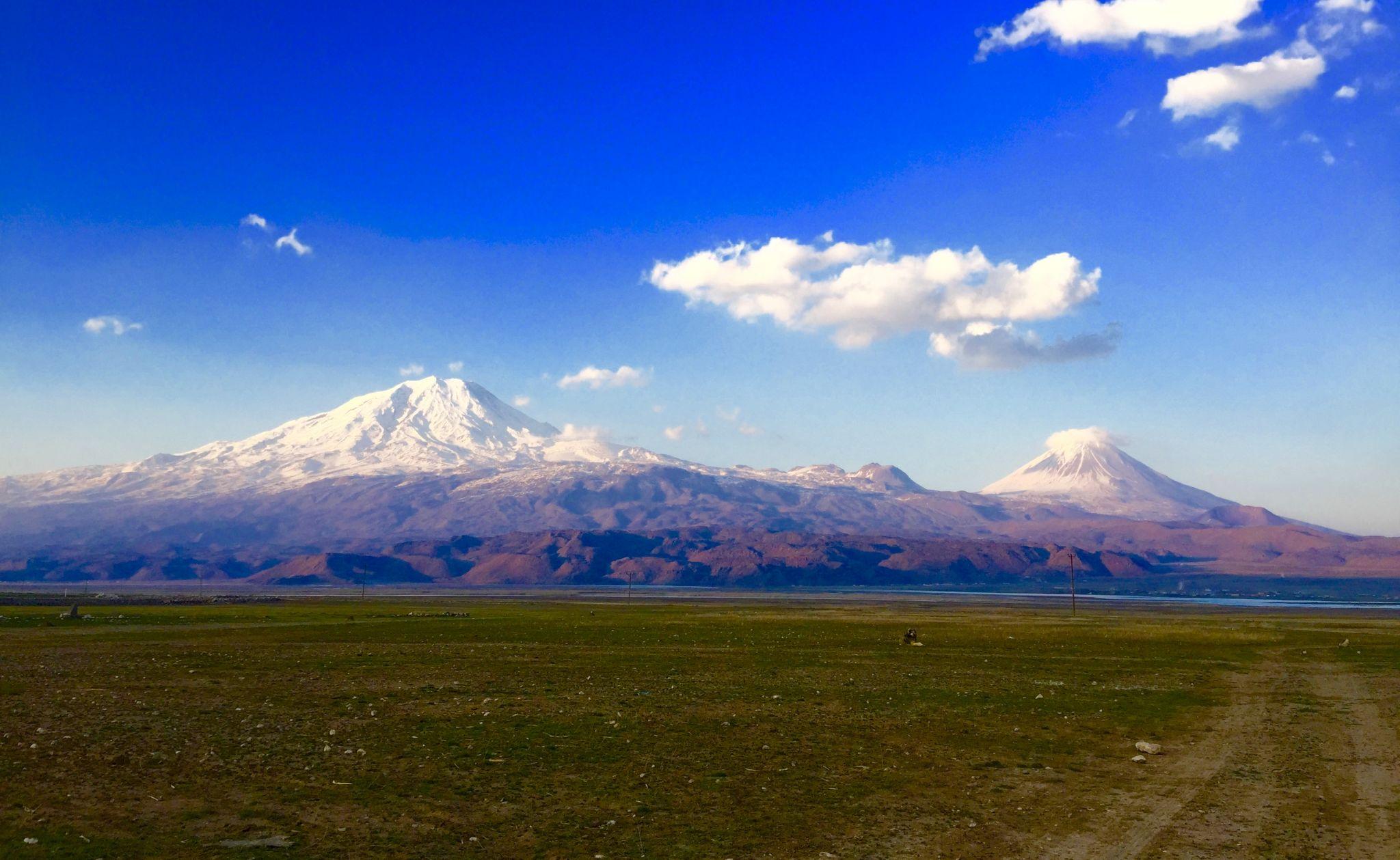 Ararat-Brothers, Turkey