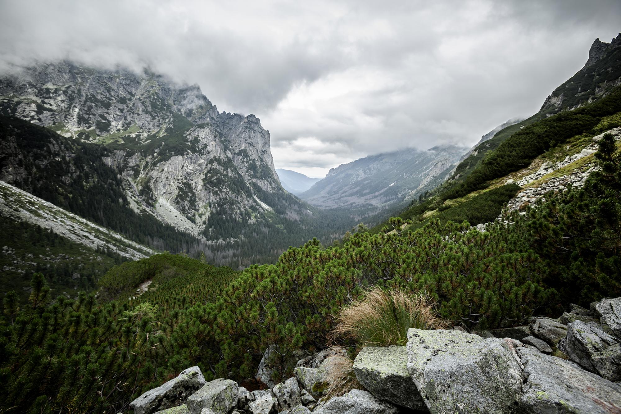 Bielovodská dolina, Slovakia (Slovak Republic)