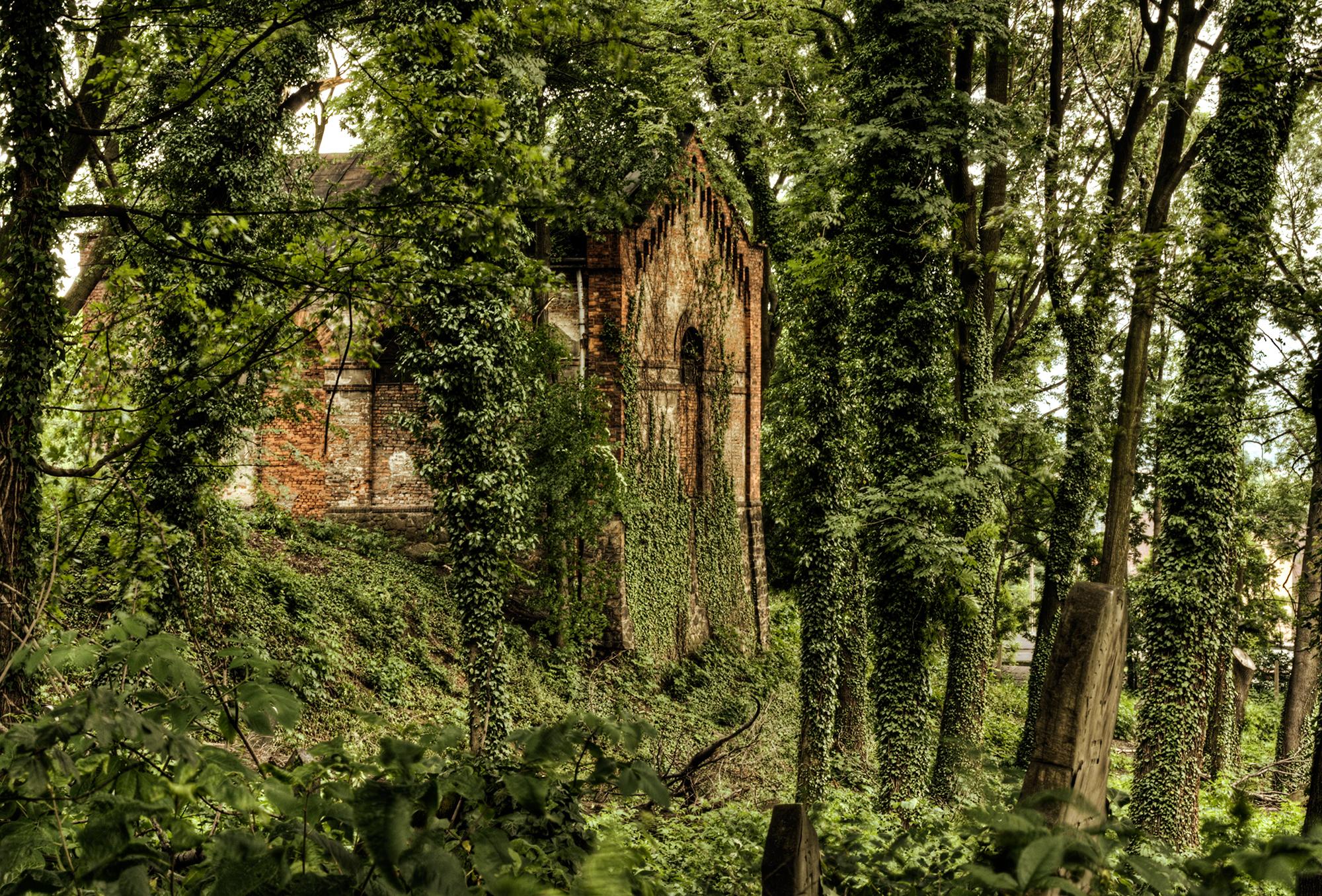 Jewish cemetery in Cieszyn, Poland