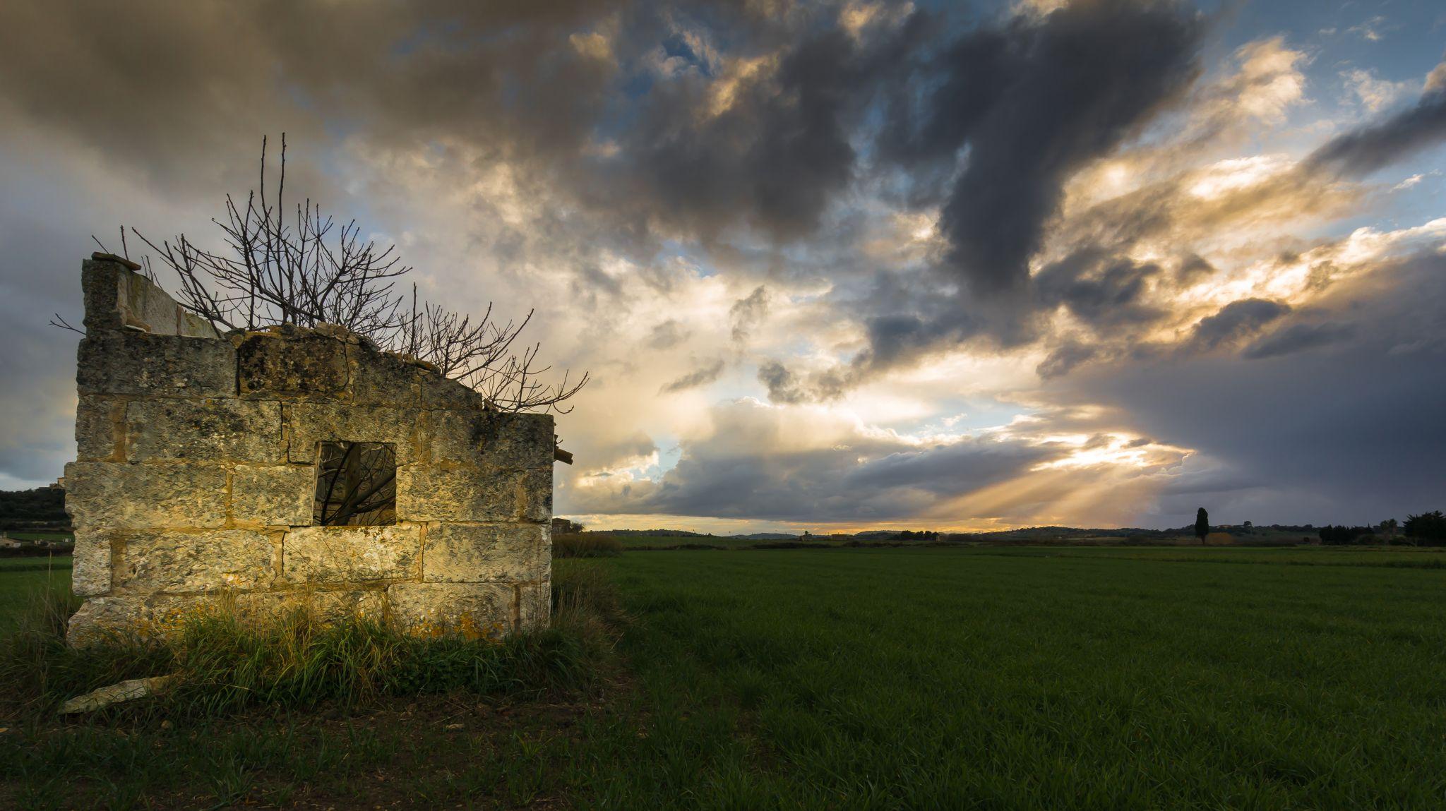 Mallorquin countryside, Spain