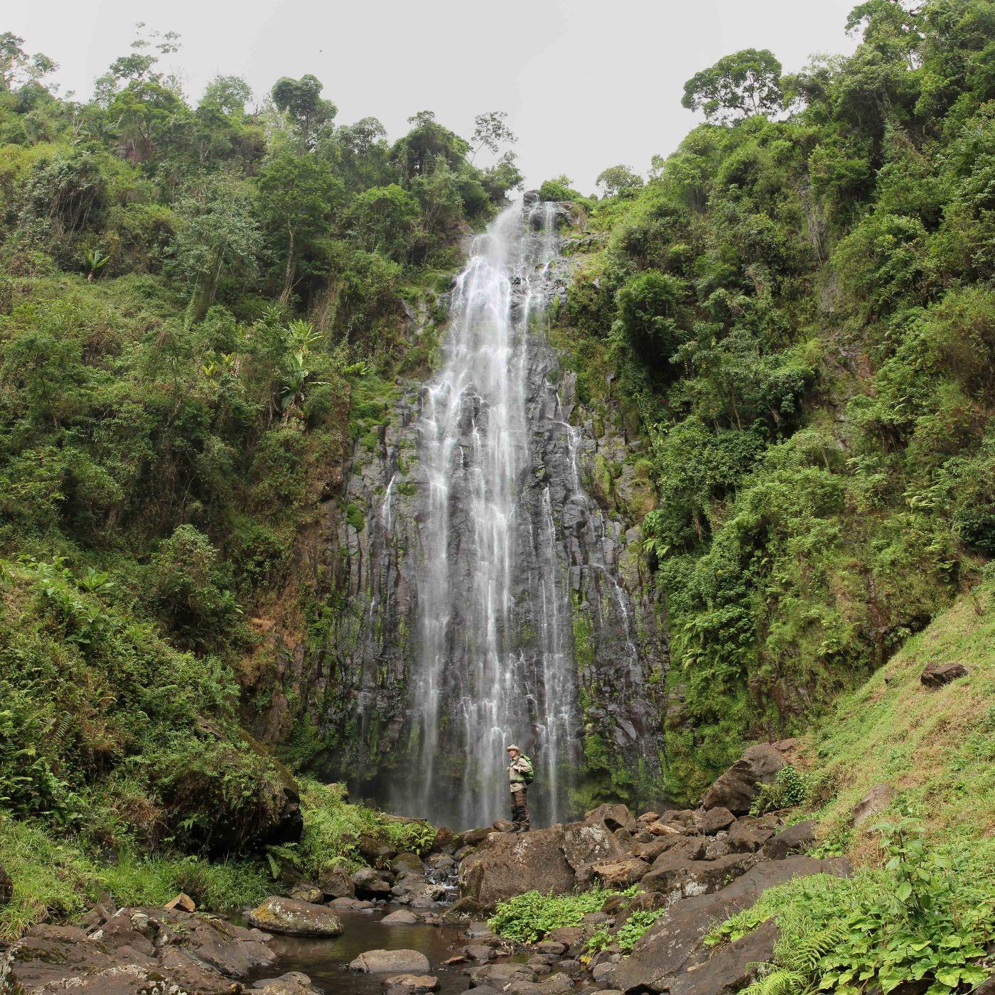 Materuni Jungle-Waterfalls near Kilimanjaro, Tanzania