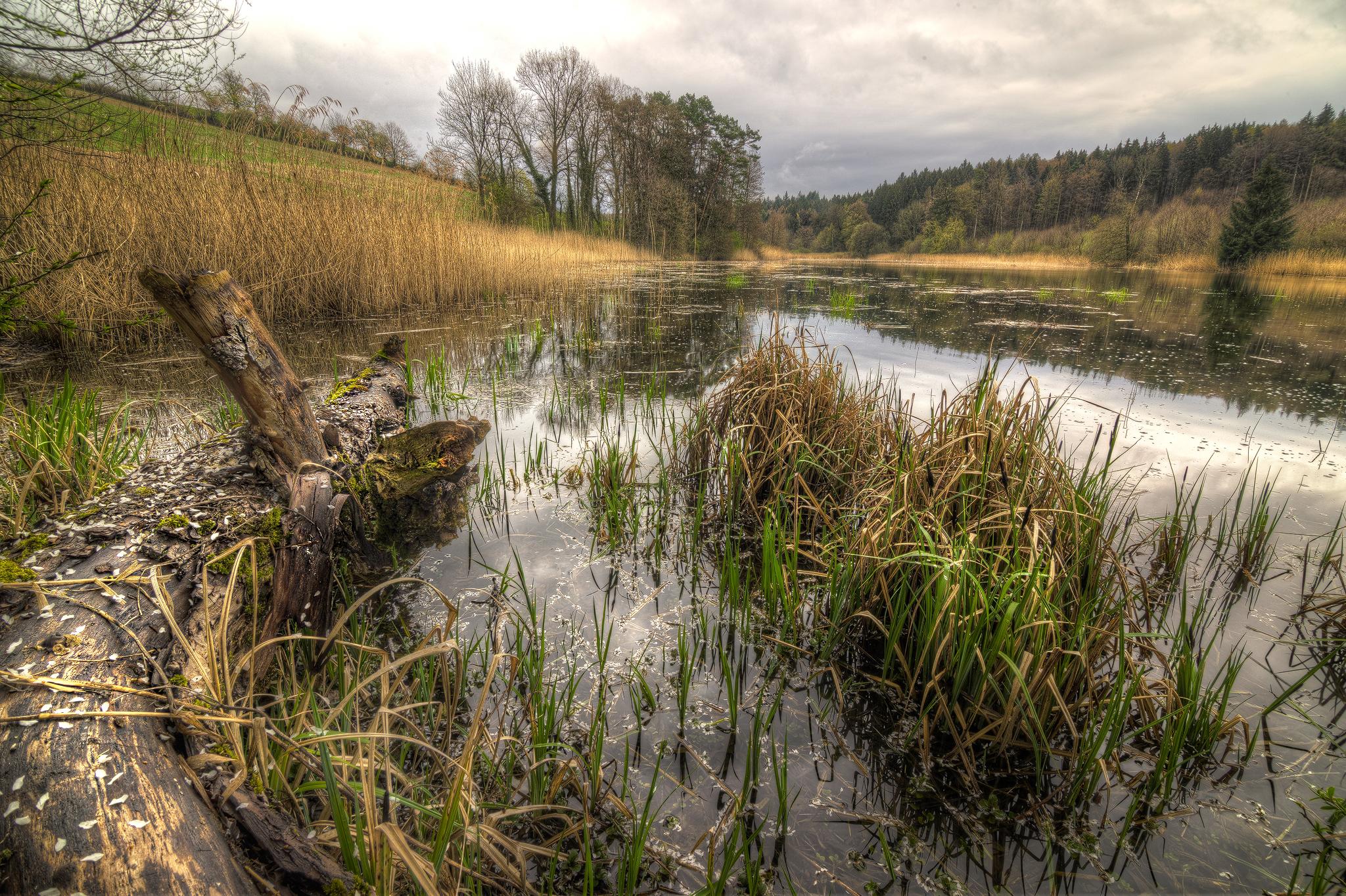 Small Lake, Germany