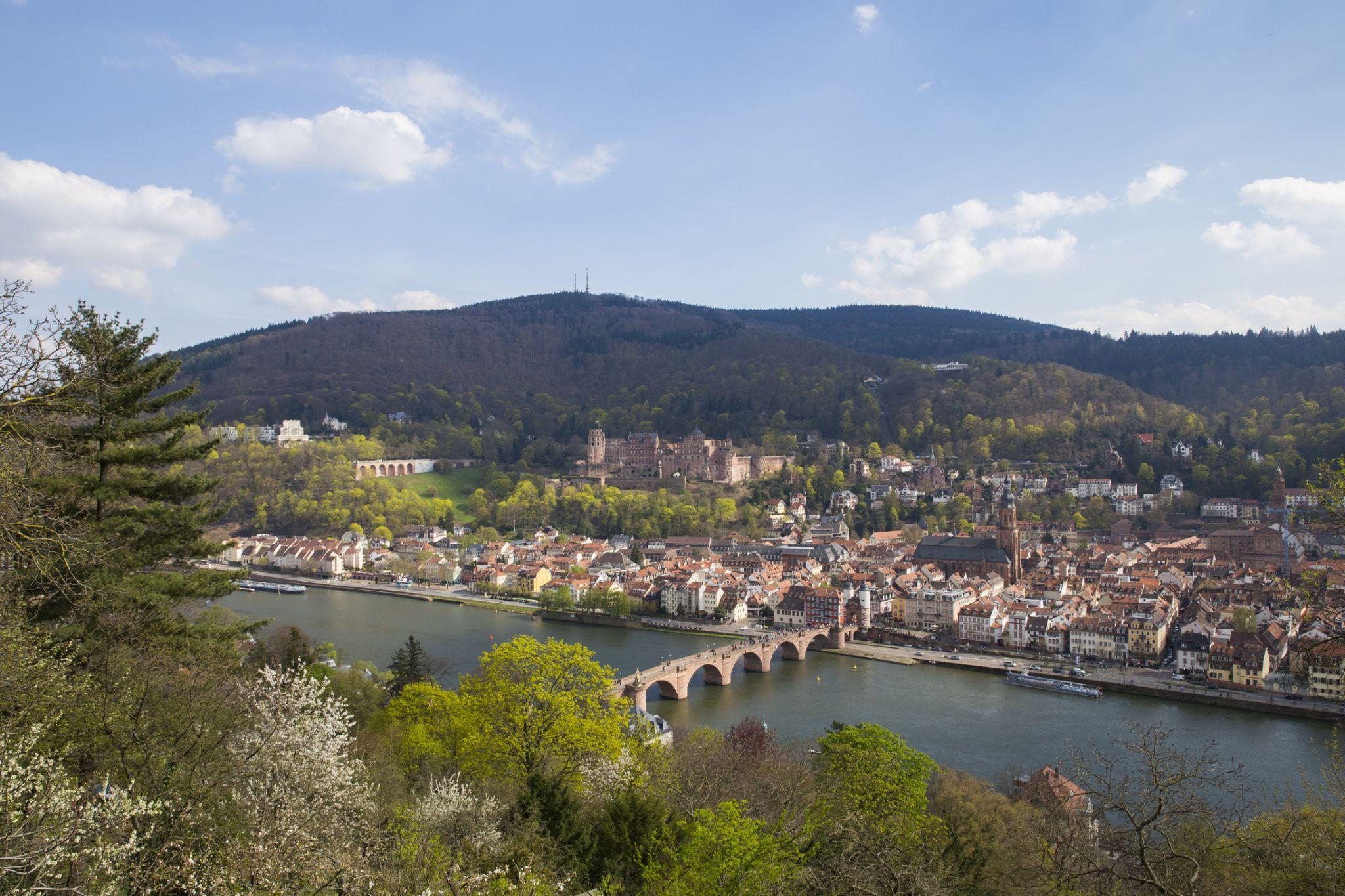 Heidelberg view from Philosophenweg, Germany