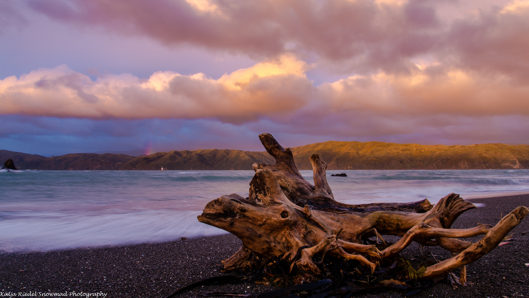 Seatoun beach, Wellington, New Zealand, New Zealand