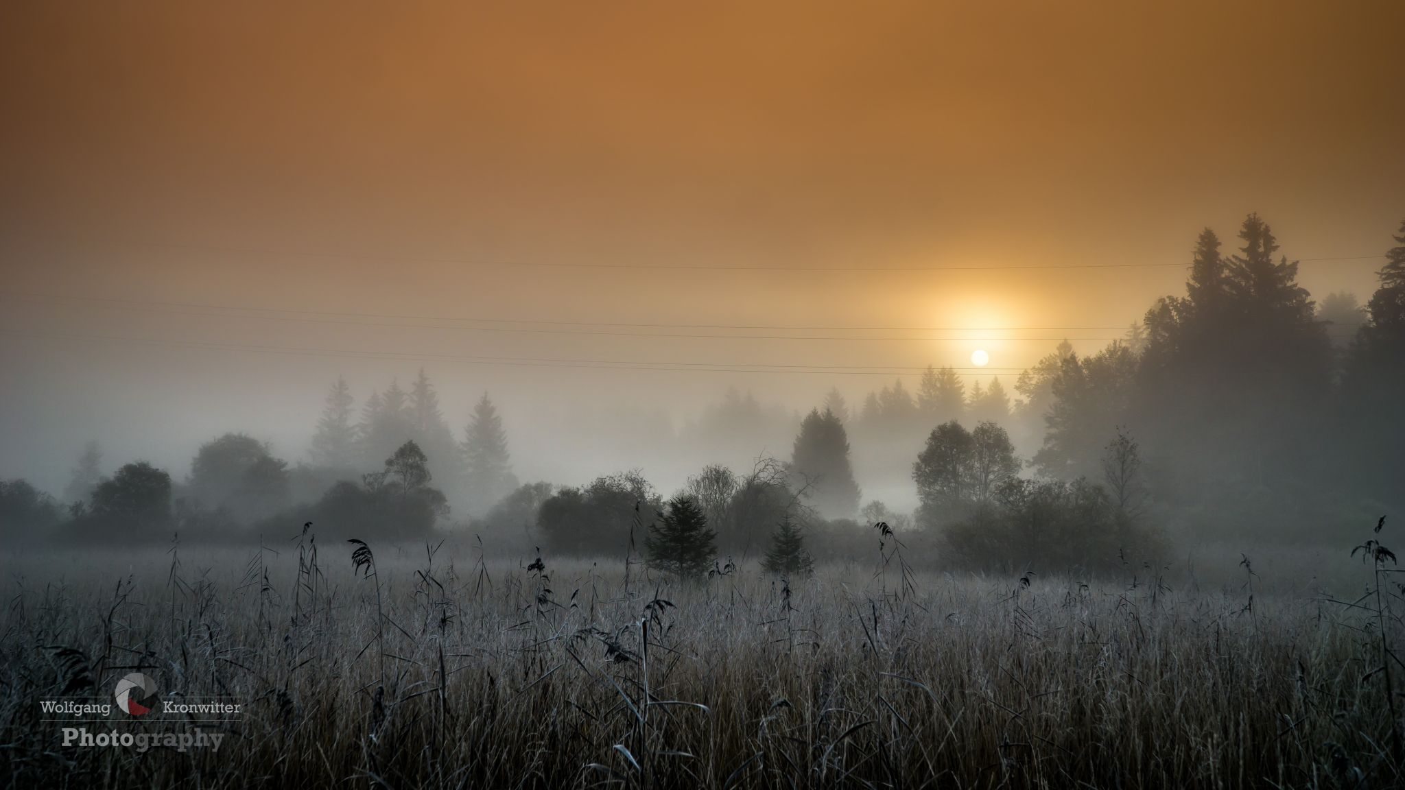 Morning sun behind the fog, Germany