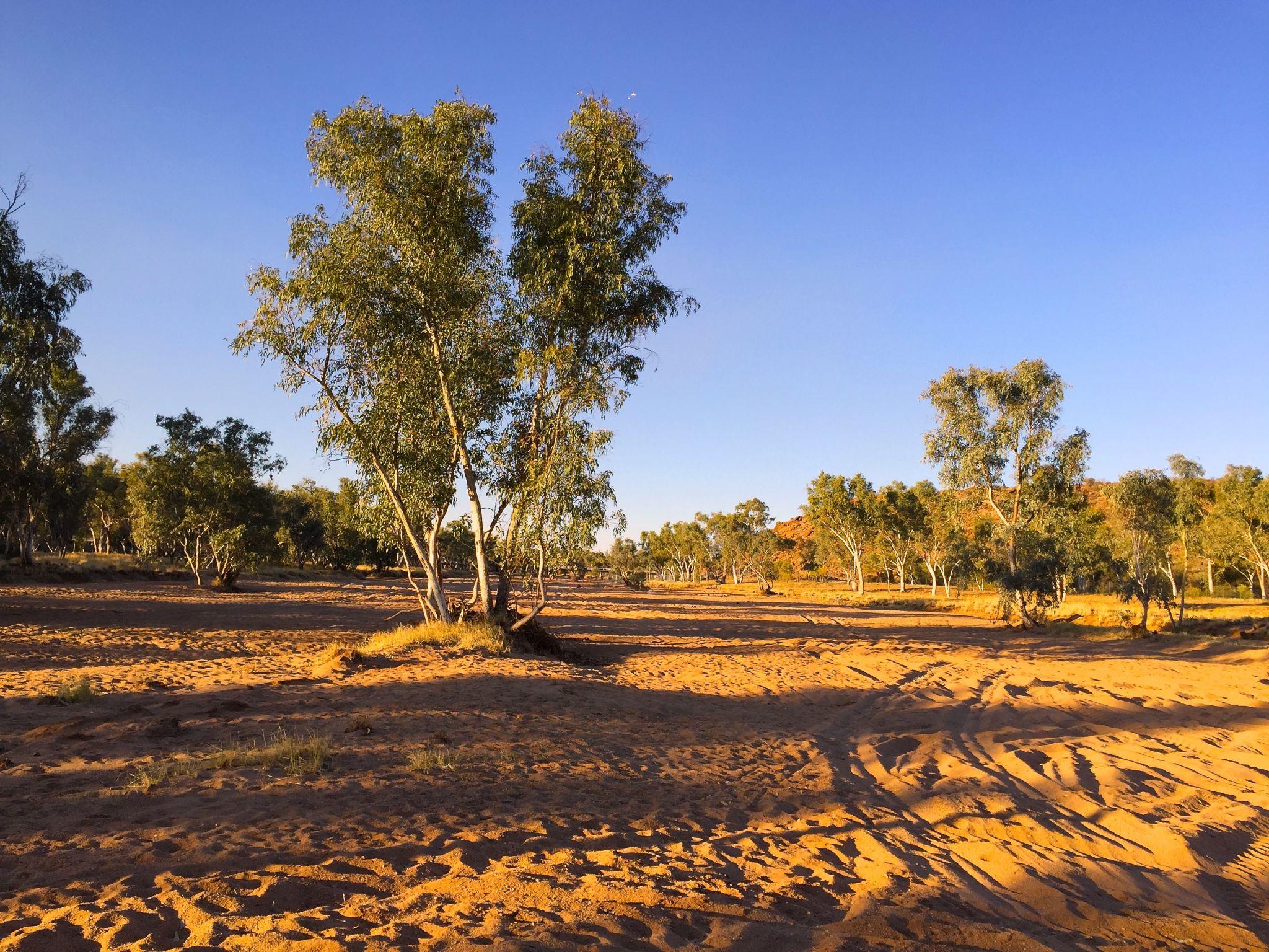 Todd river - Alice Springs, Australia