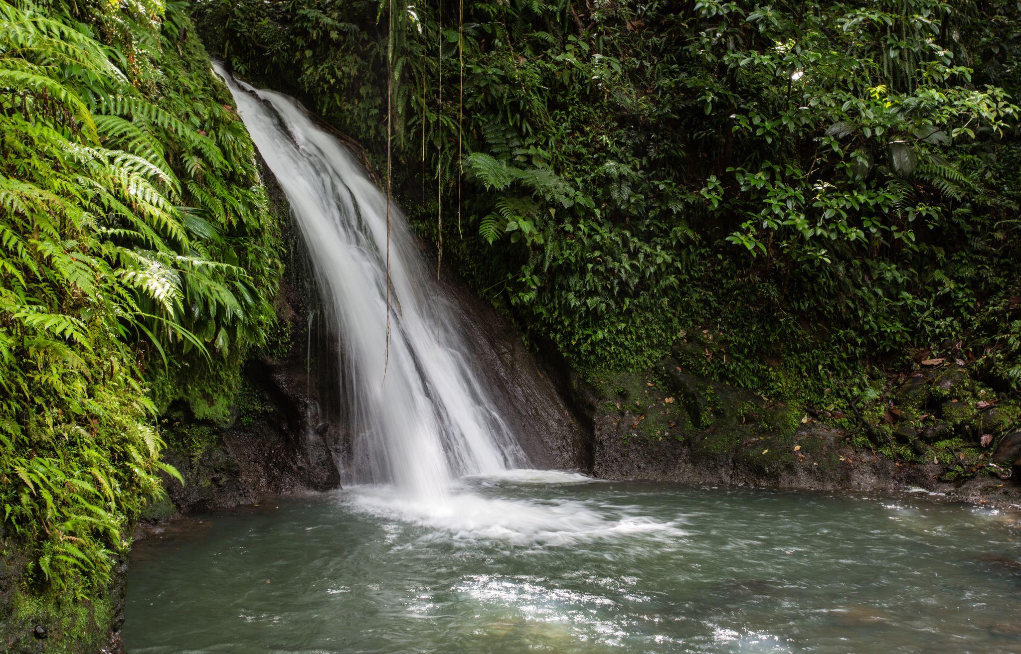 Cascade aux Ecrevisses, Guadeloupe