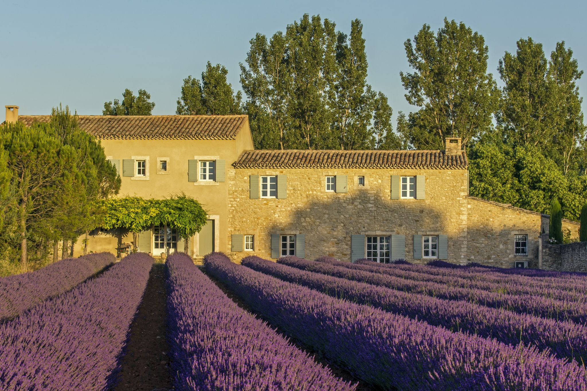 Lavender Fields and the Stone Villa, France
