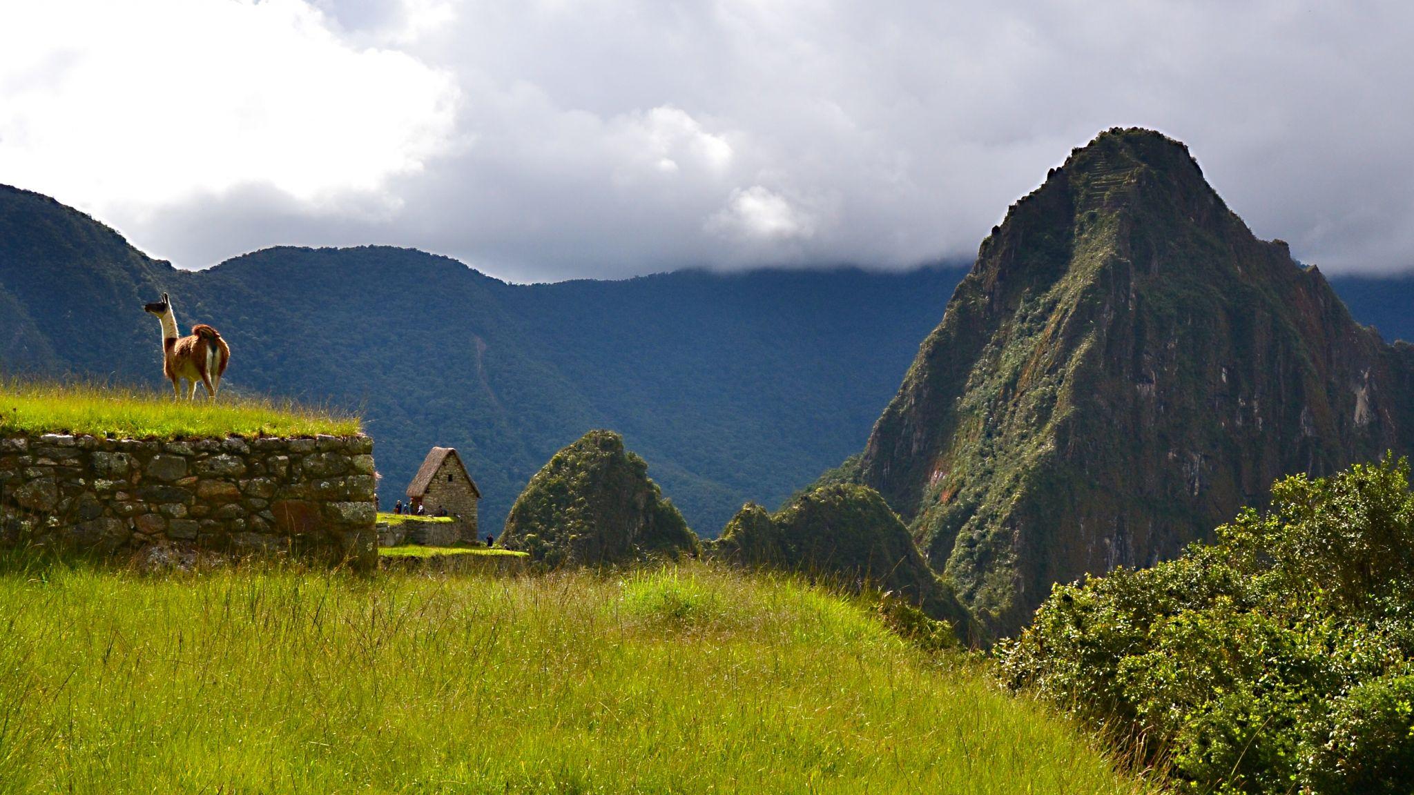The king of Machu Picchu, Peru