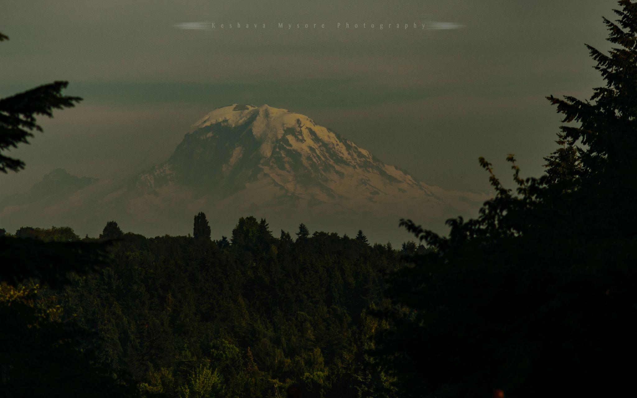 Rainier vista from Uni. of Washington, Seattle, USA