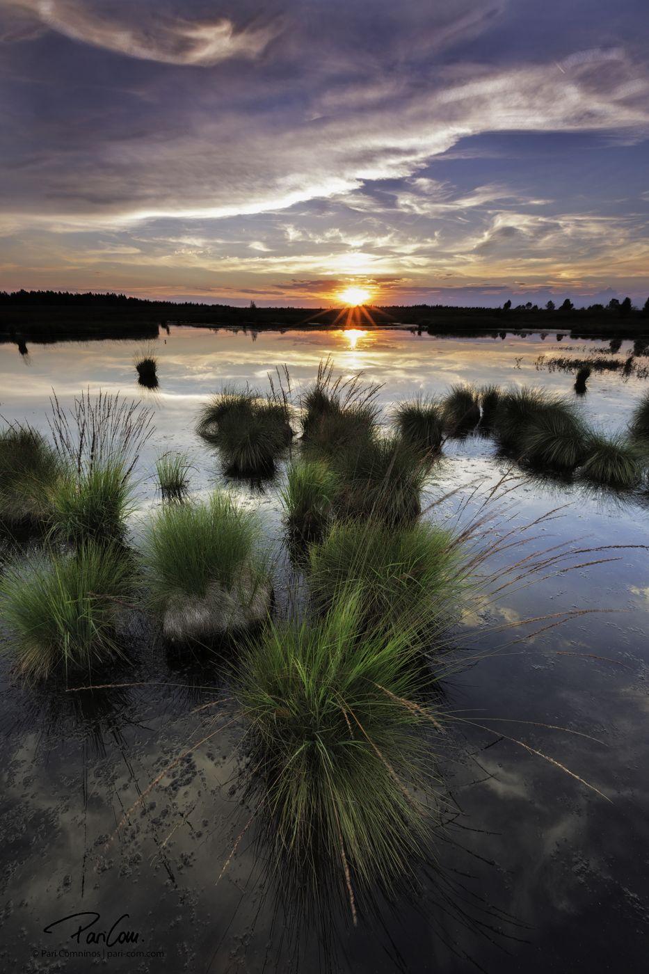 Brackvenn sunset, Belgium