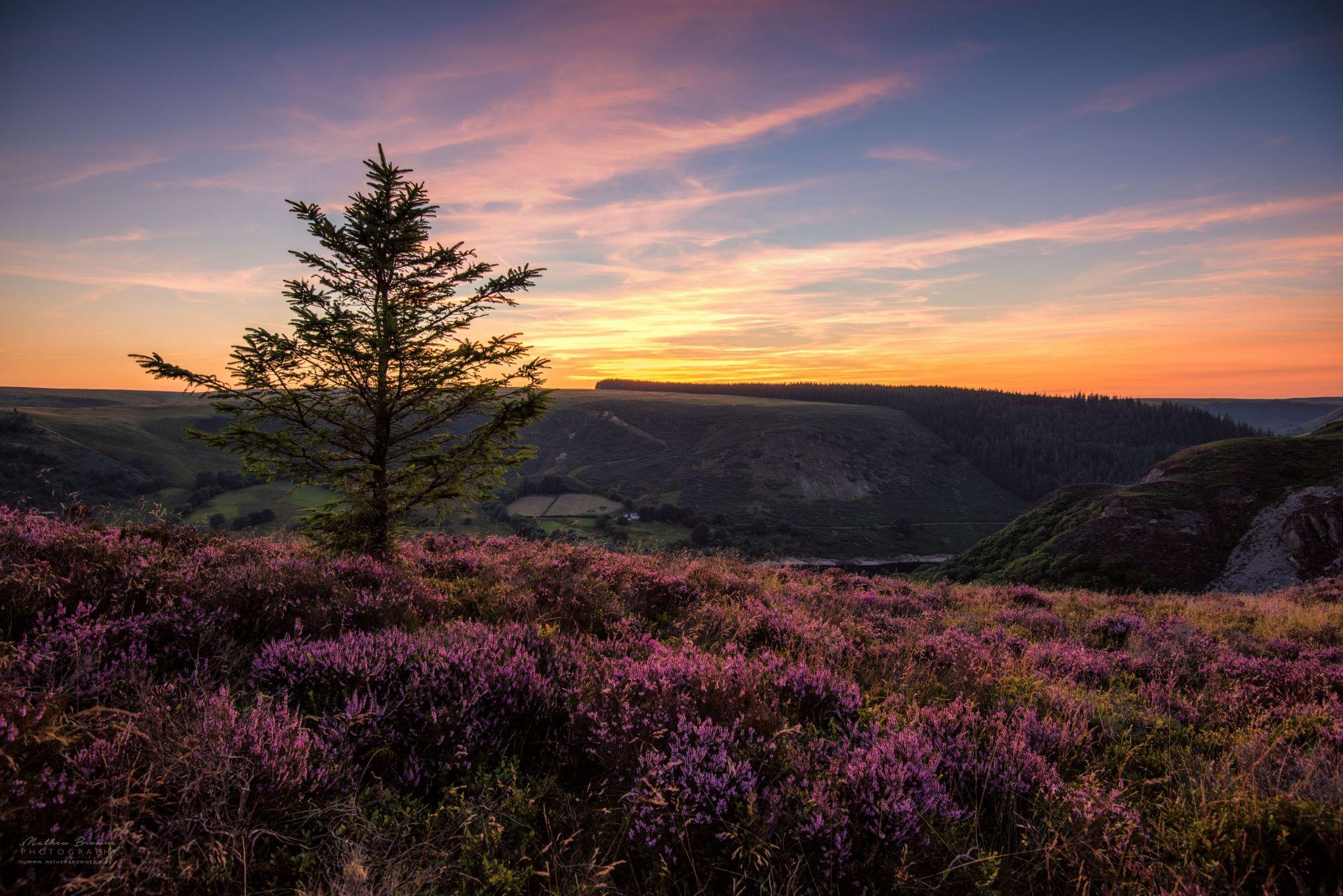 Garreg Ddu Reservoir from the cliffs above, United Kingdom