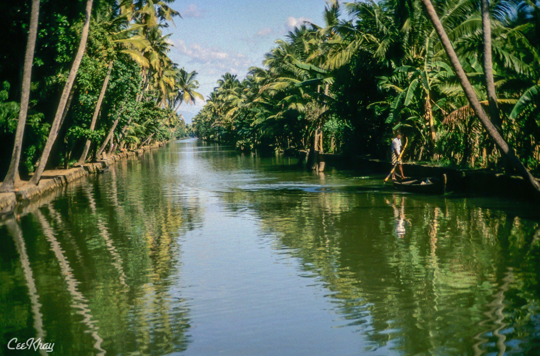 Kerala's Backwaters, India