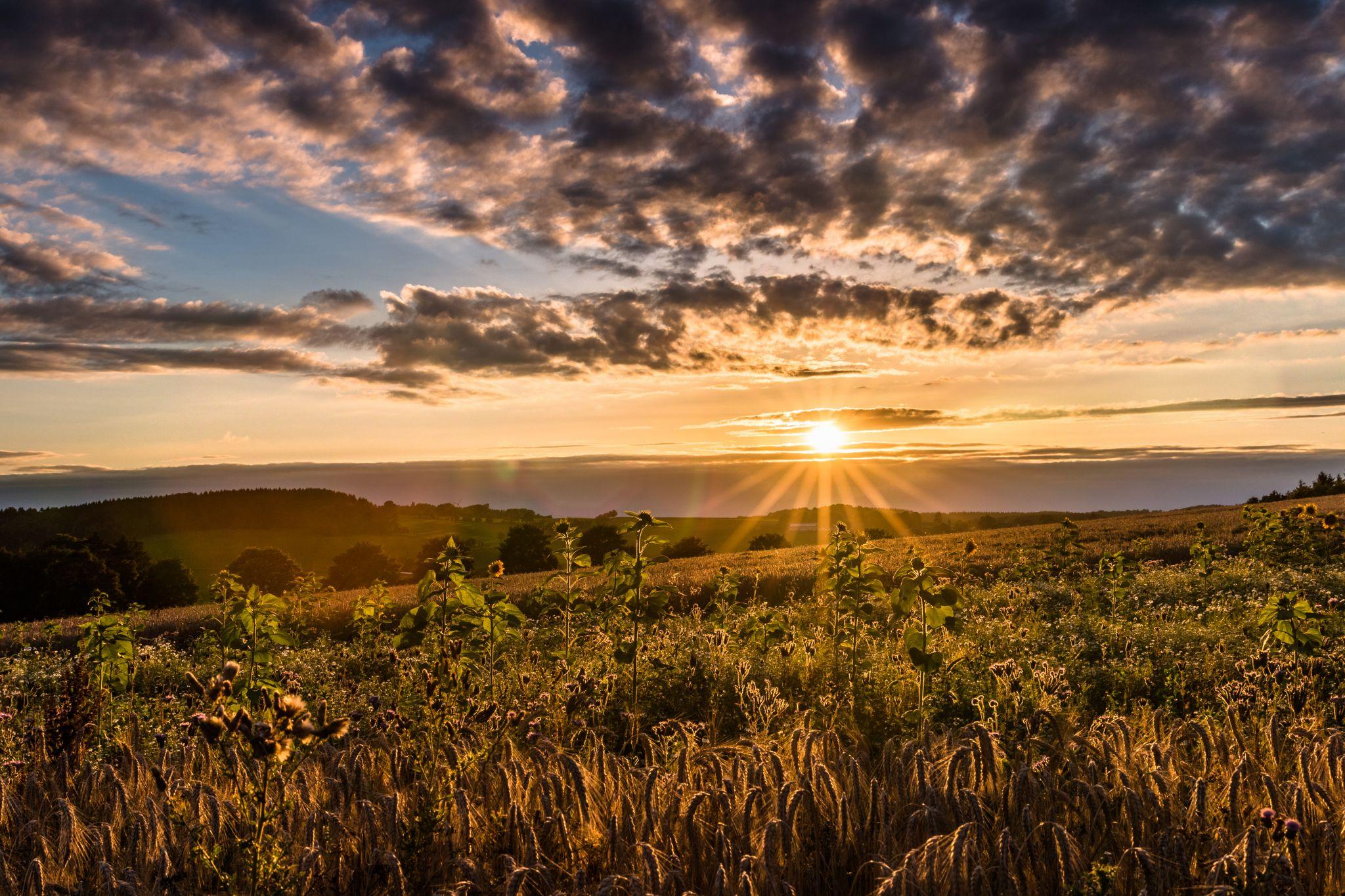 Sunset in Othmaringhausen, Germany