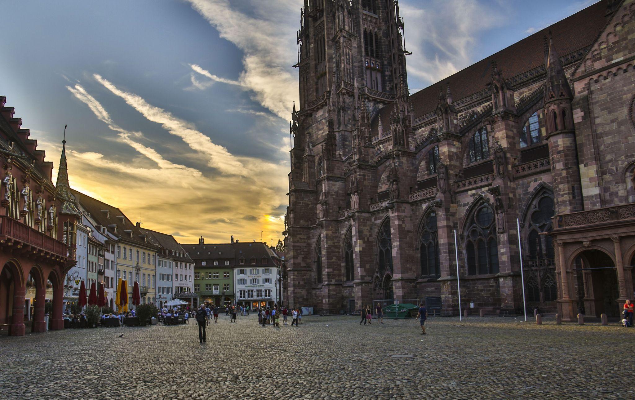 Freiburger Münster / Freiburg Minster, Germany