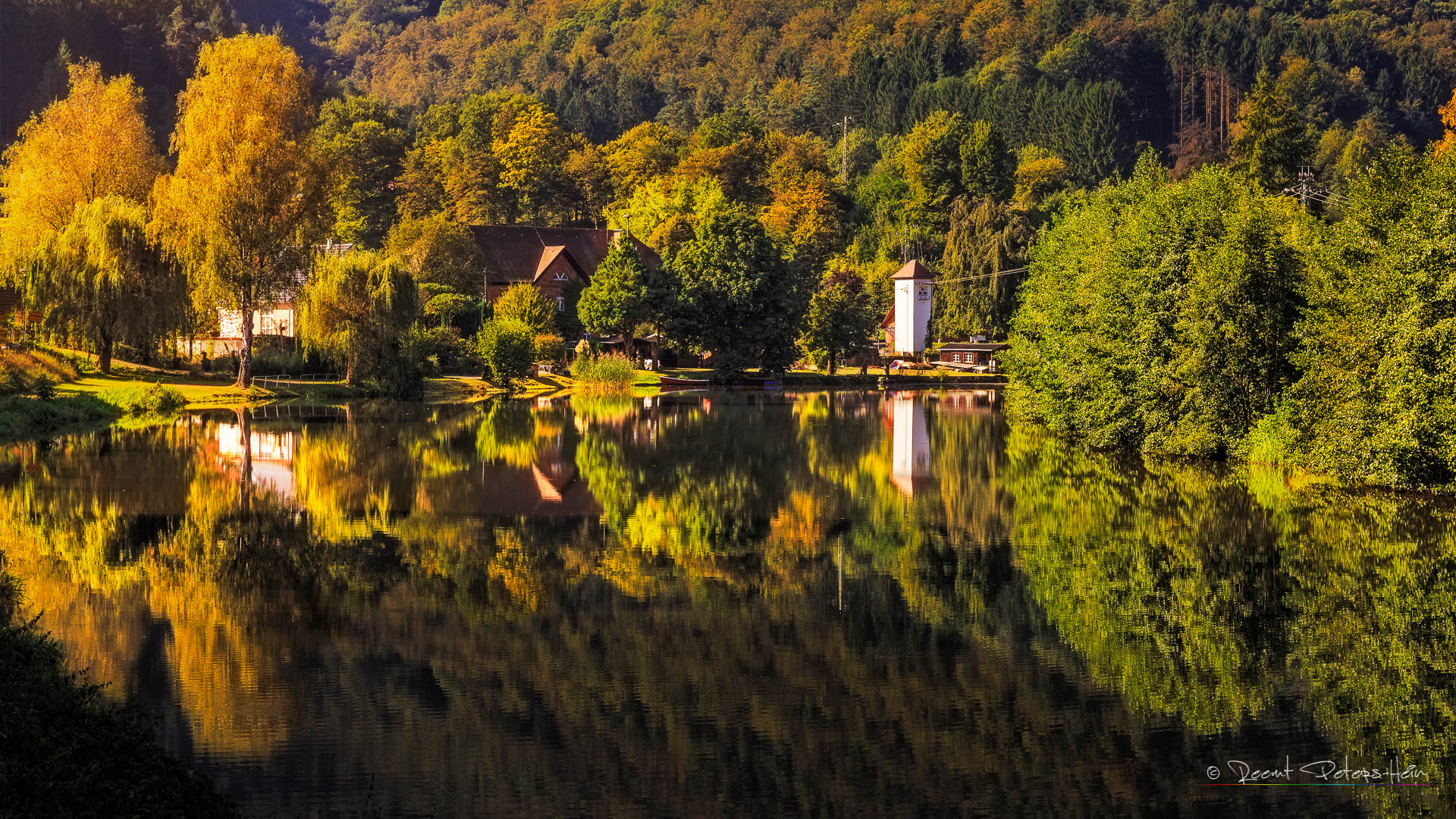 Reflections on Königsweiher, Germany
