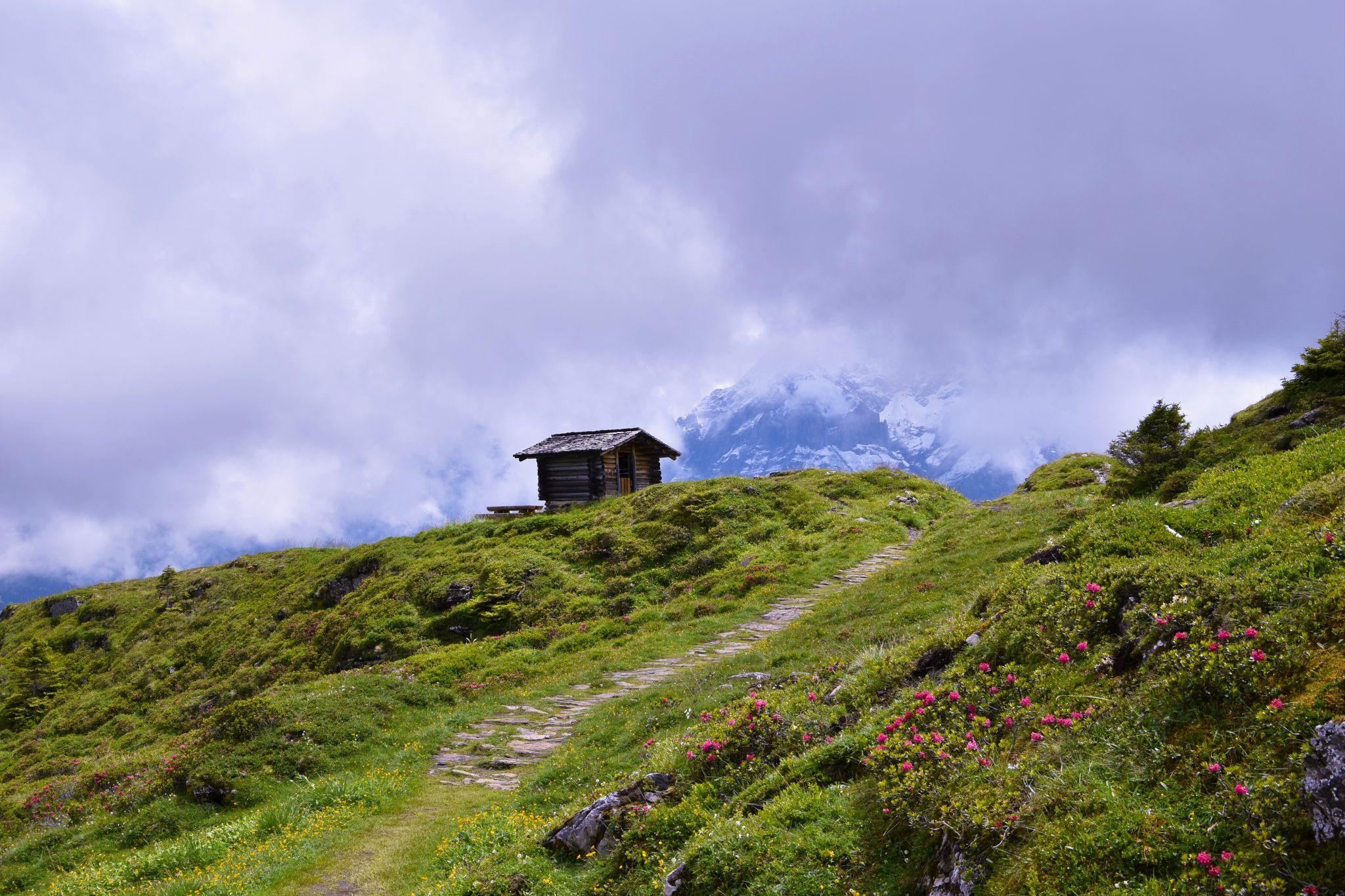 The Swiss Alps, Switzerland