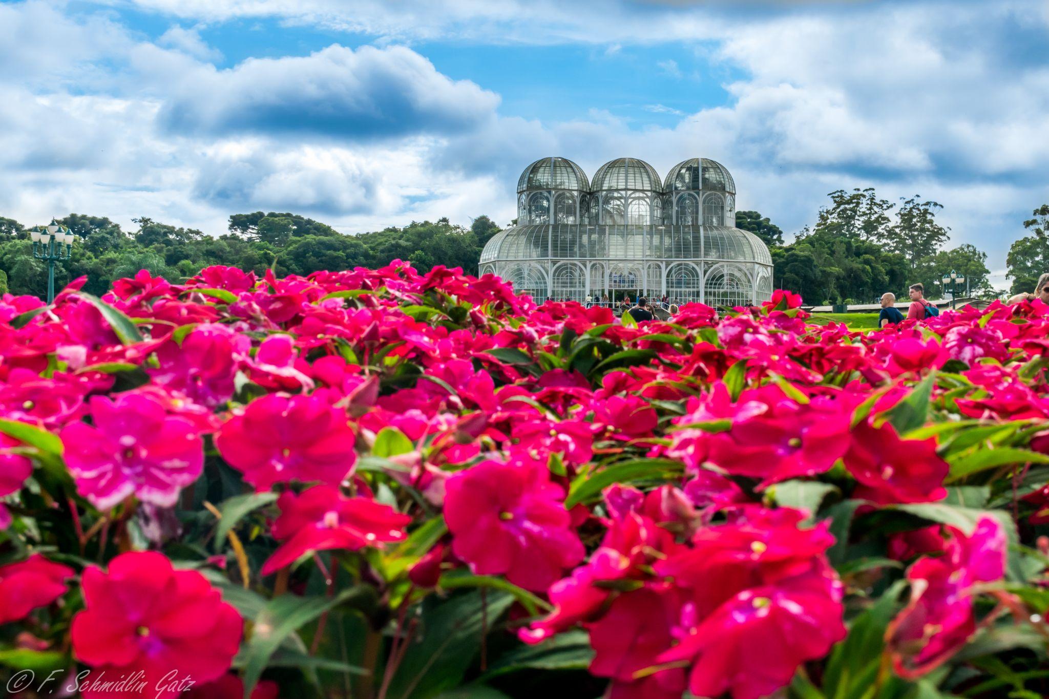 Botanical Garden Curitiba, Brazil