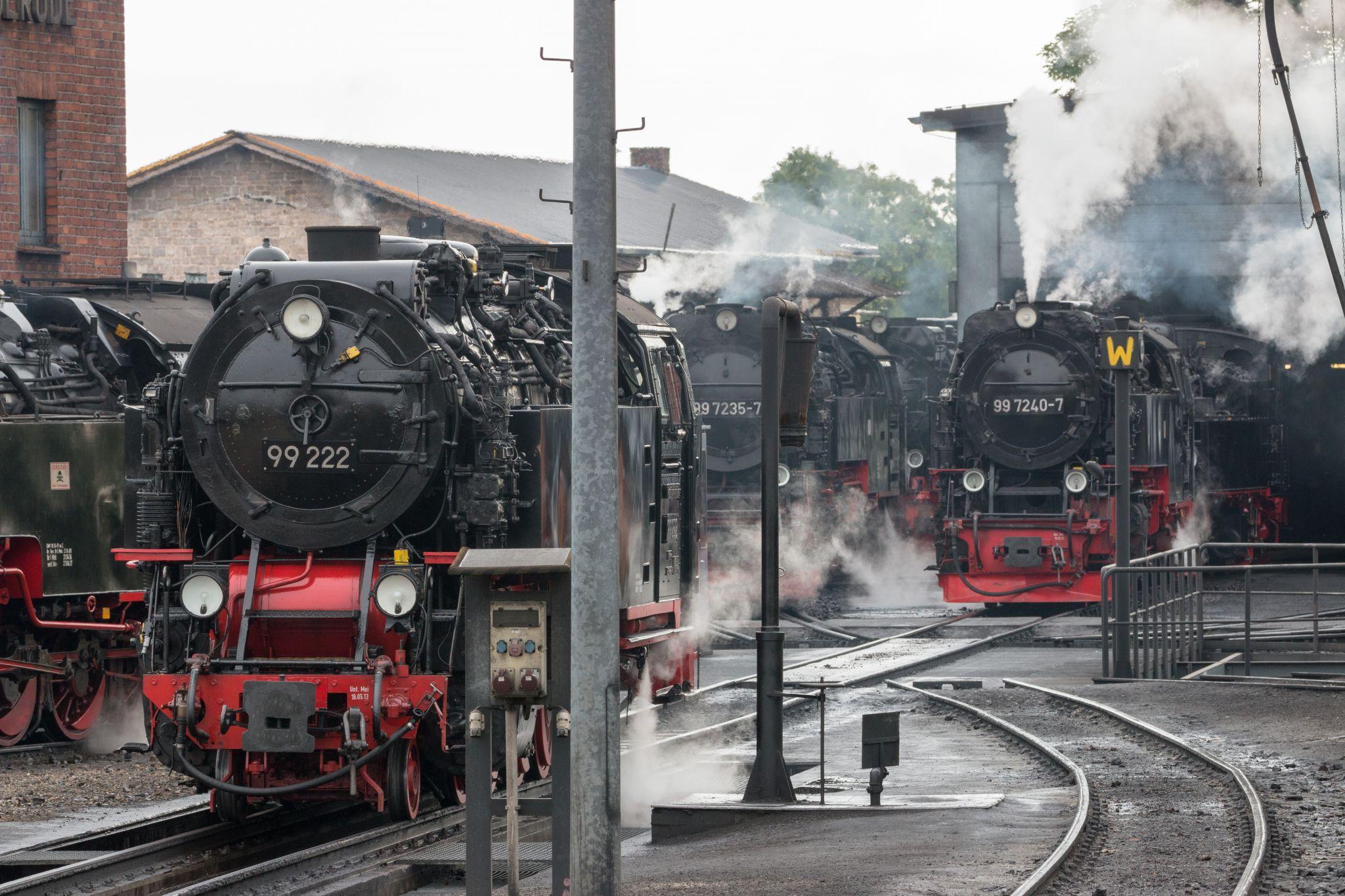 Depot of the Harzer Schmalspurbahnen, Wernigerode, Harz, Germany