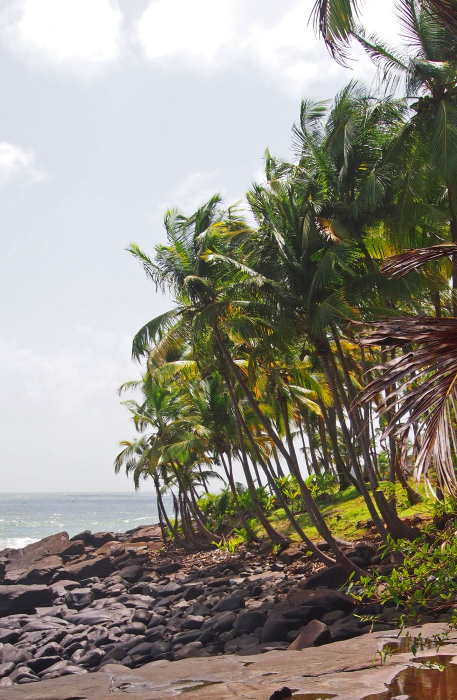 Ile Royale, French Guyana, French Guiana