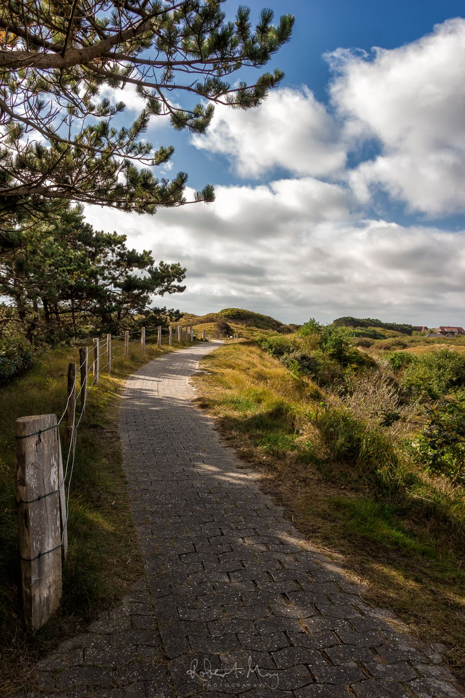 Path on Baltrum, Germany