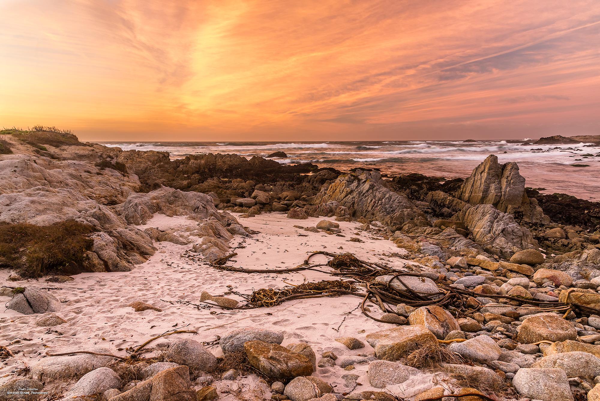 Asilomar Beach Rocks, USA