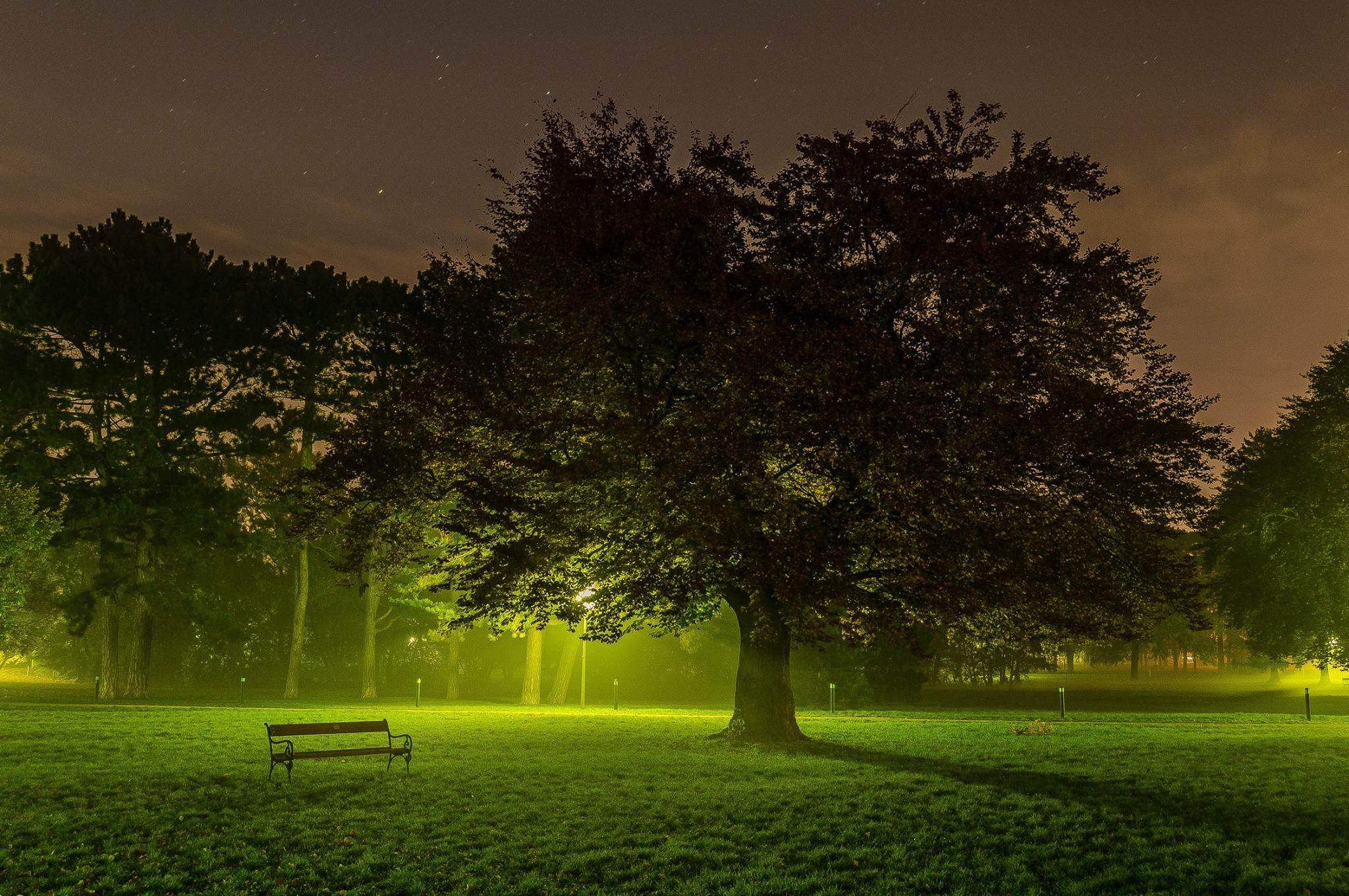 That light in the park, Austria
