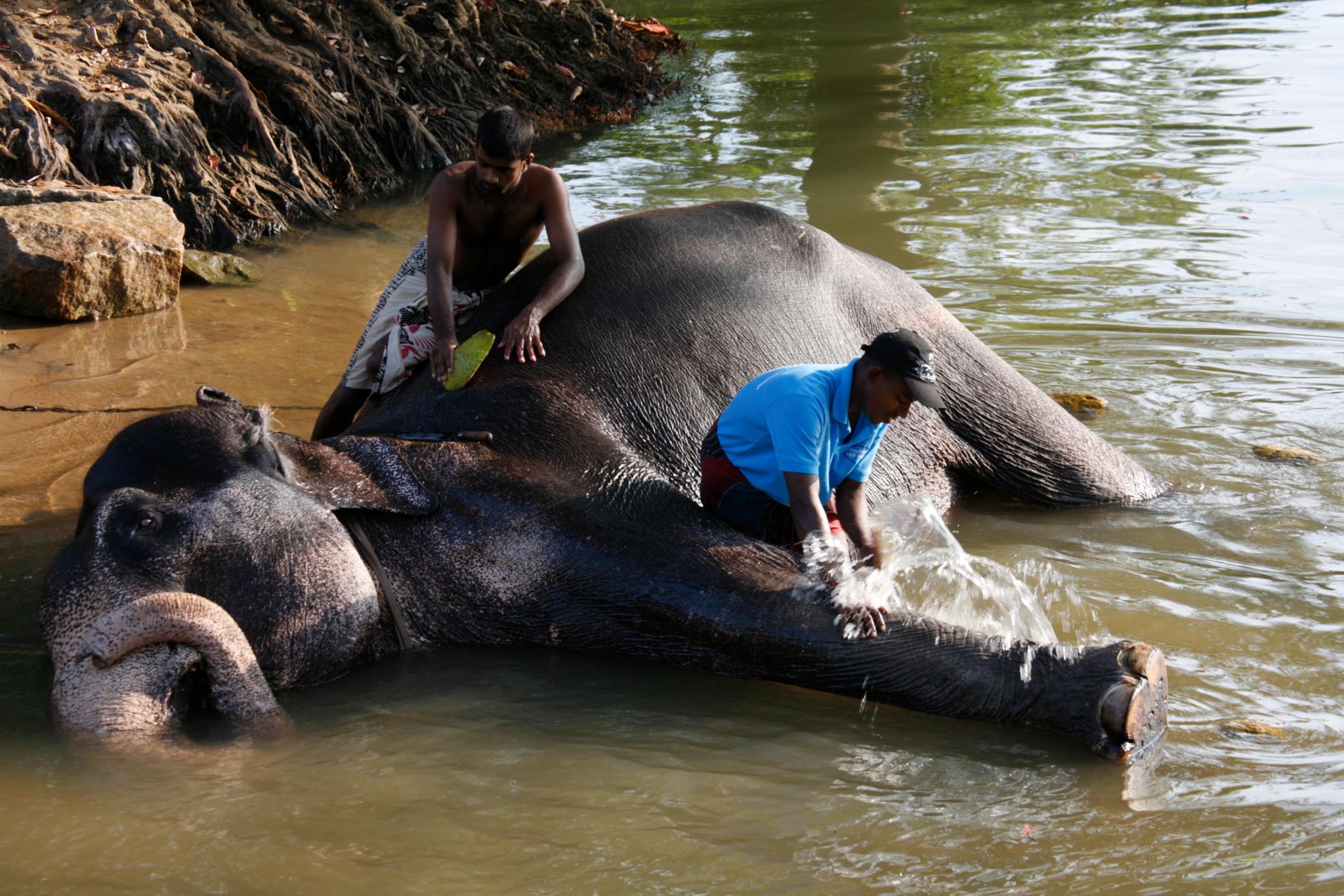 Spa, Sri Lanka