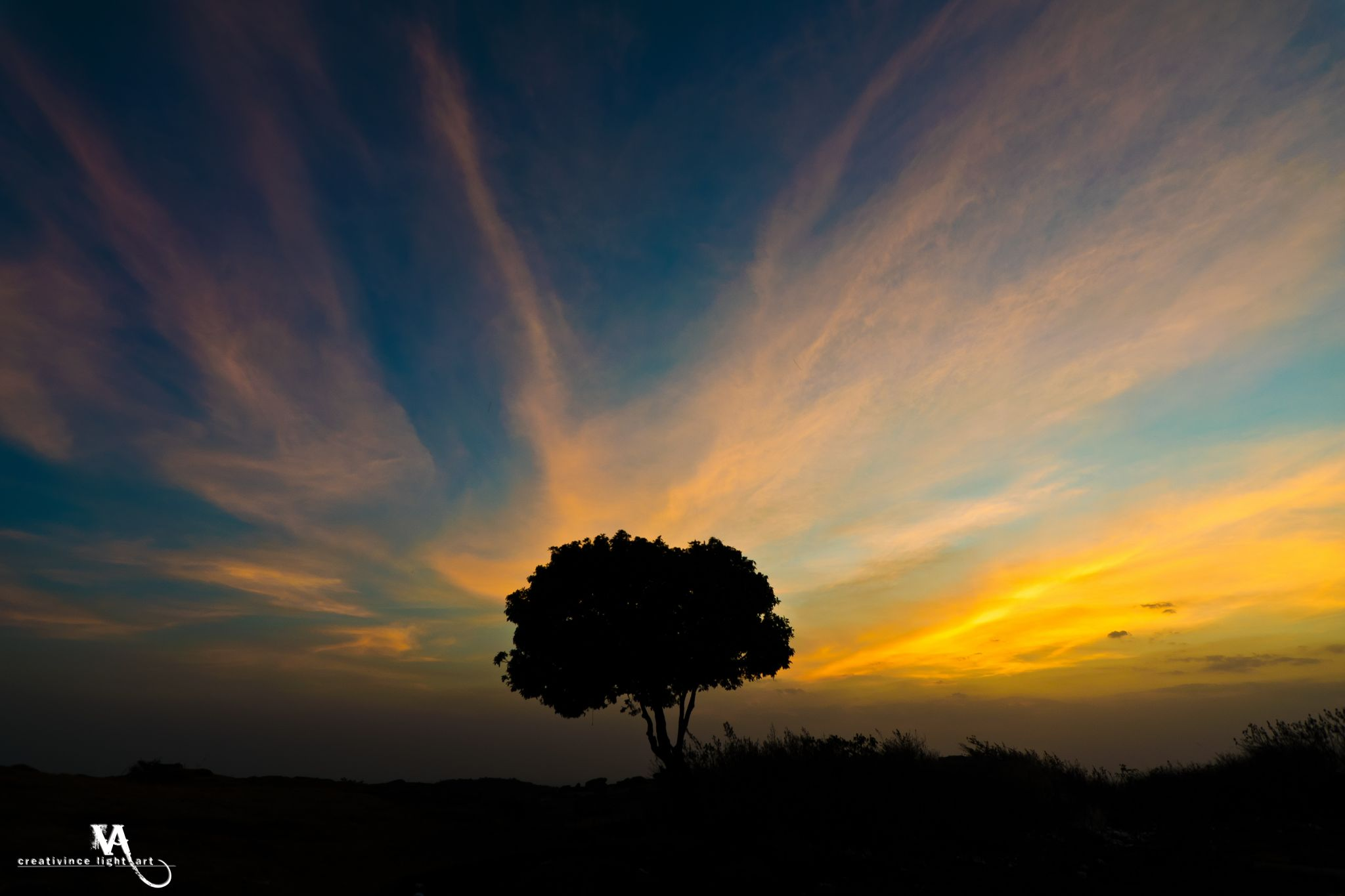 Lone Tree Silhouette, Nandi Hills, India