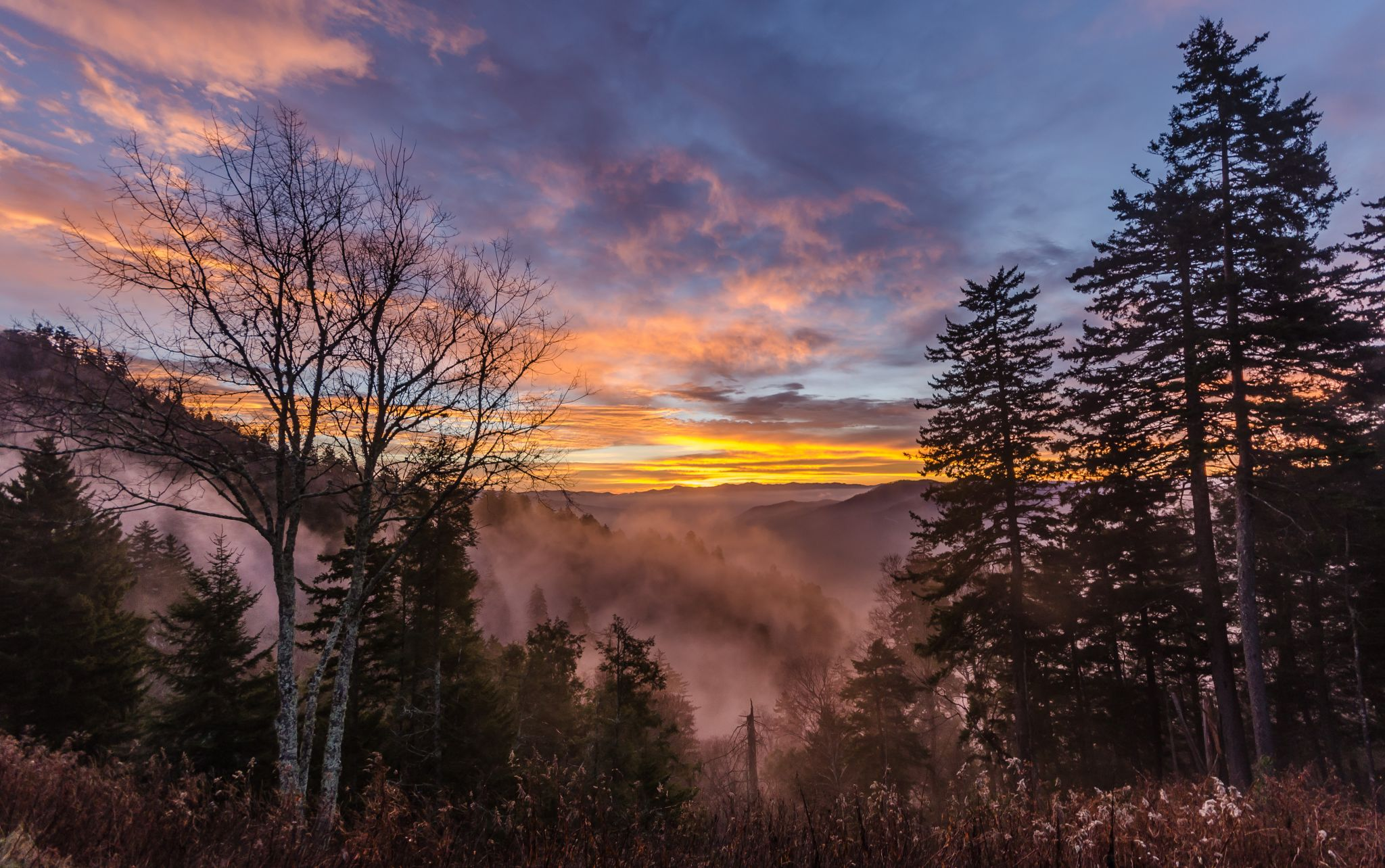 Sunrise at Newfound Gap, USA