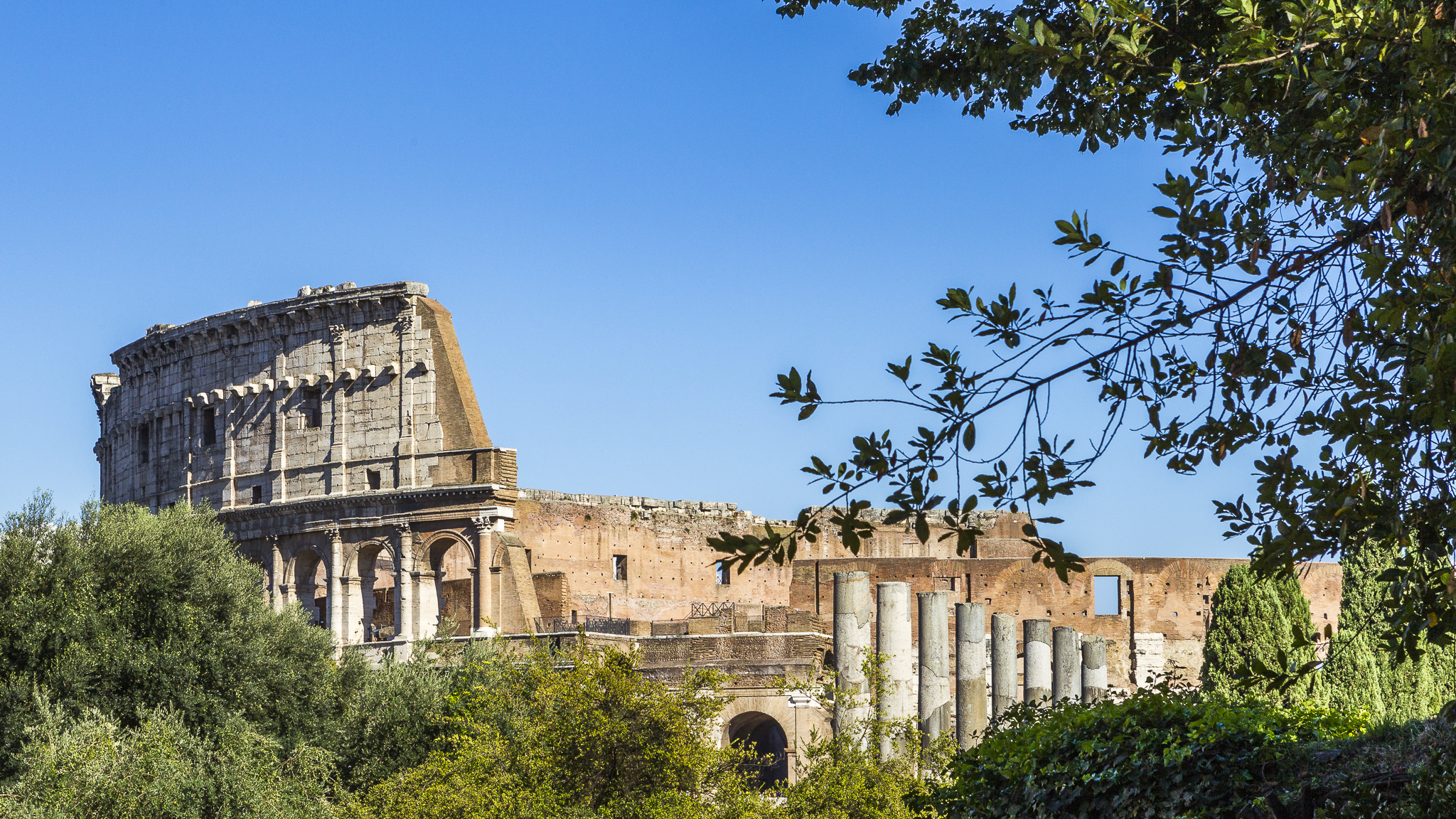 Colosseum, Flavian Amphitheatre, Italy